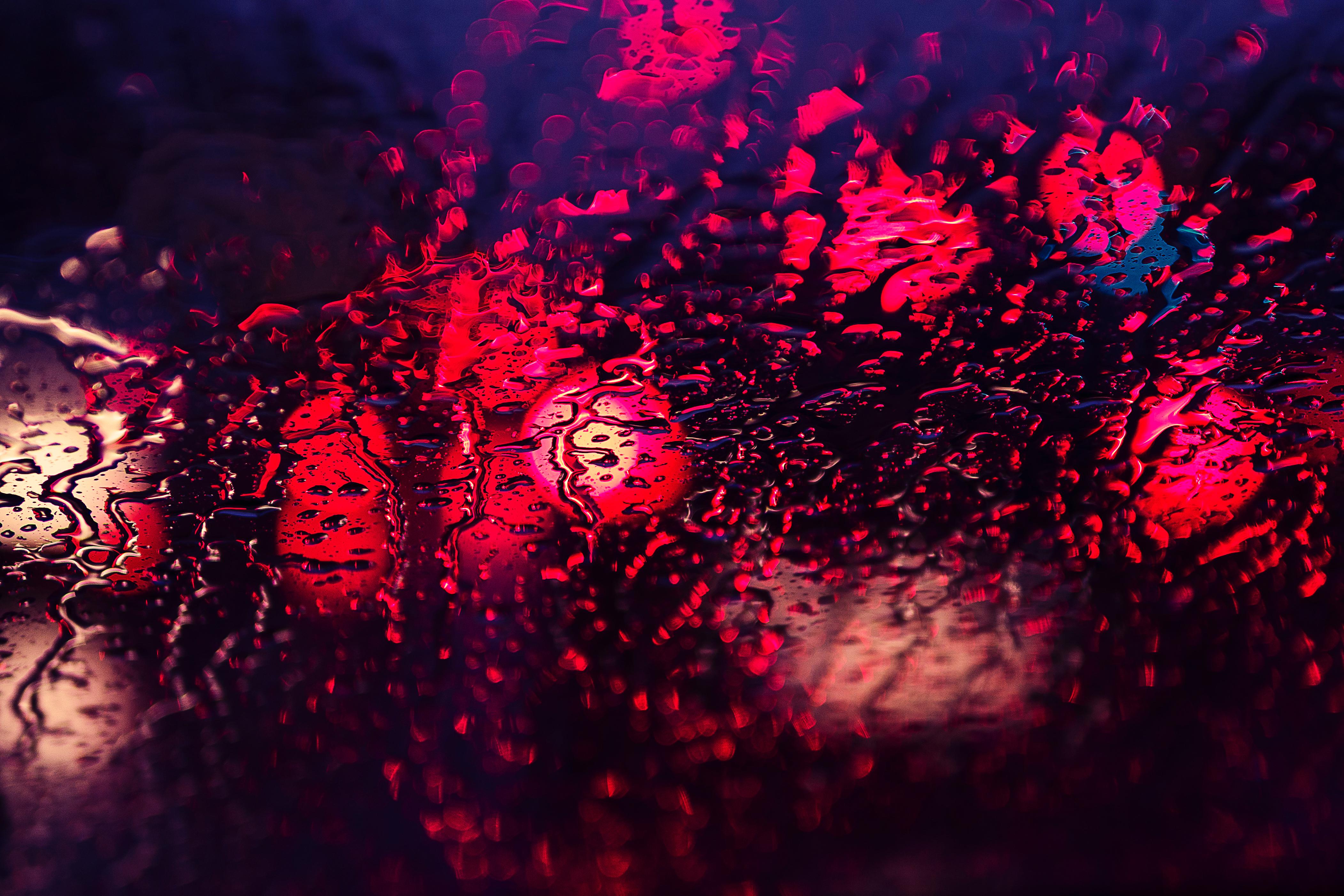 Gambar cahaya malam bunga merah kegelapan kembang api cahaya malam bunga merah kegelapan kembang api komputer wallpaper voltagebd Images