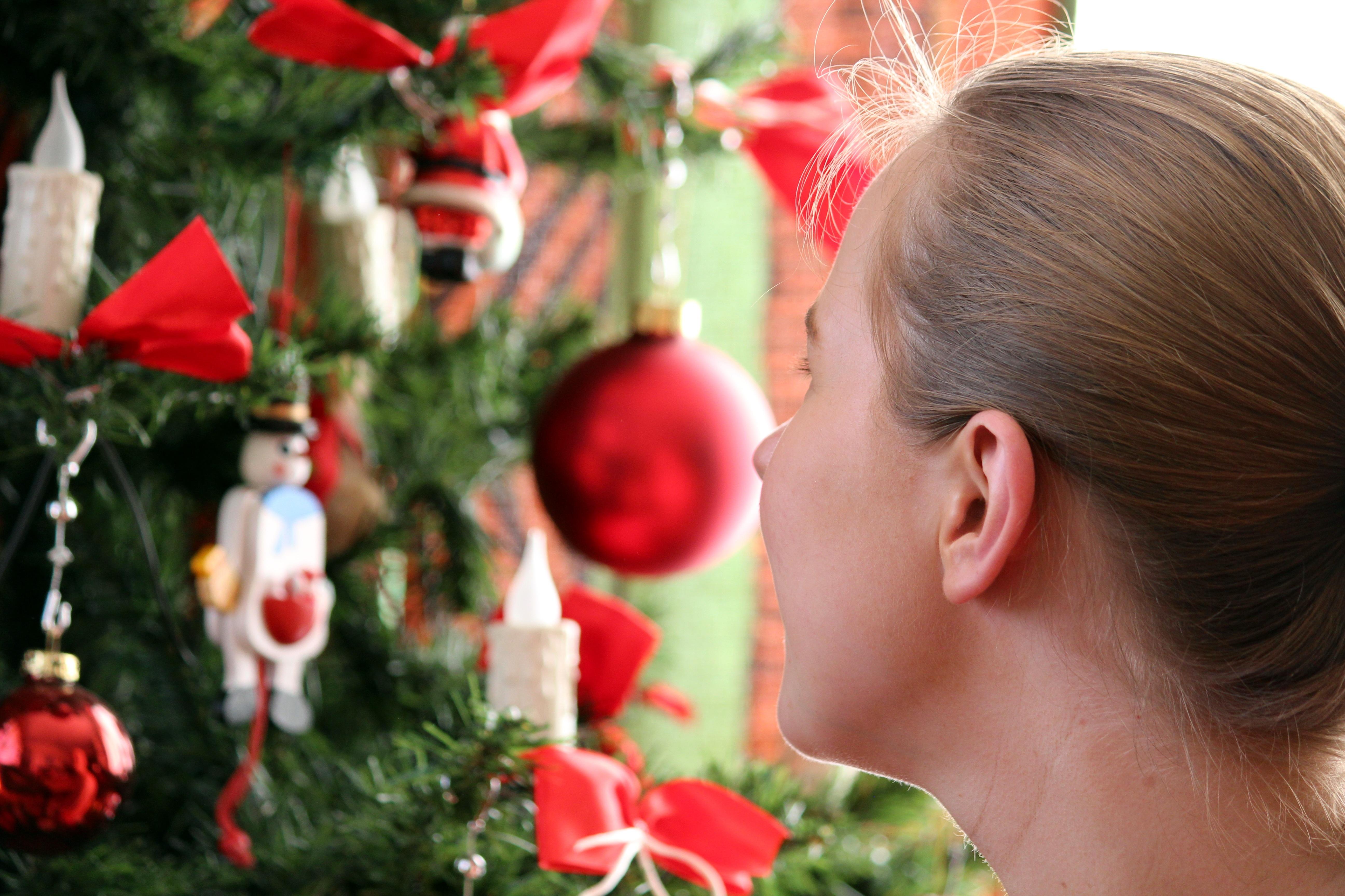 Weihnachtsbilder Tannenzweig.Kostenlose Foto Licht Pflanze Blume Dekoration Grün Rot Kind