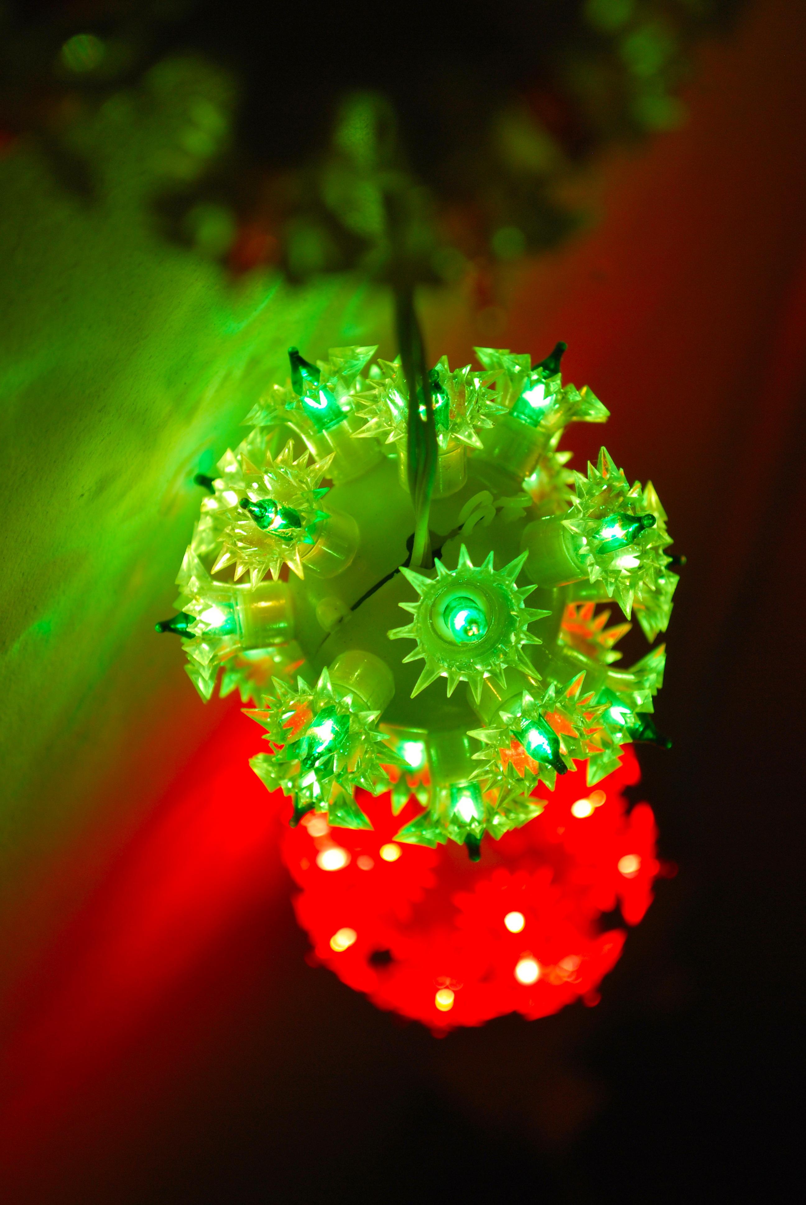 Fotos gratis : ligero, planta, fotografía, hoja, flor, pétalo, verde ...