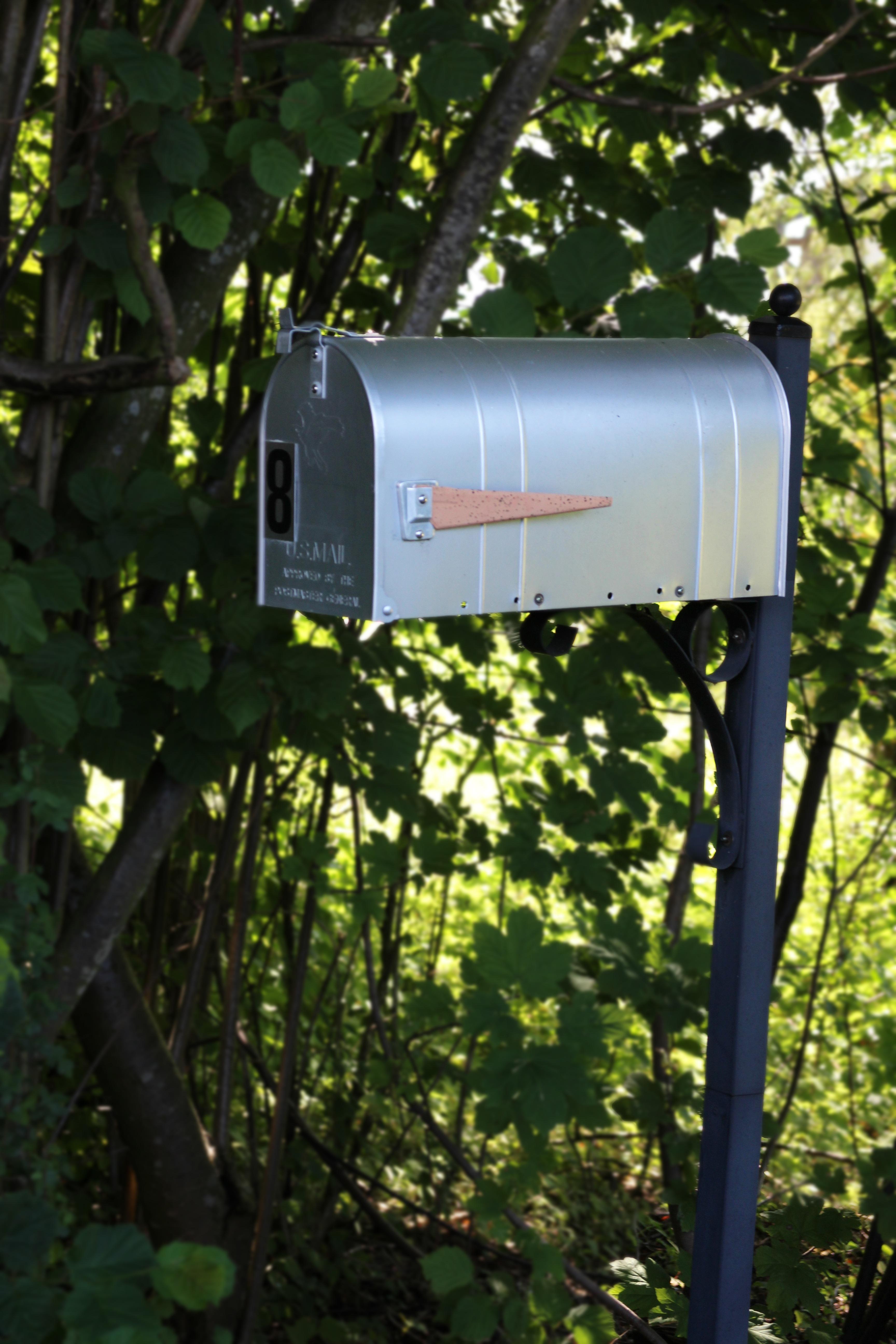 free images light post flower green usa garden lighting