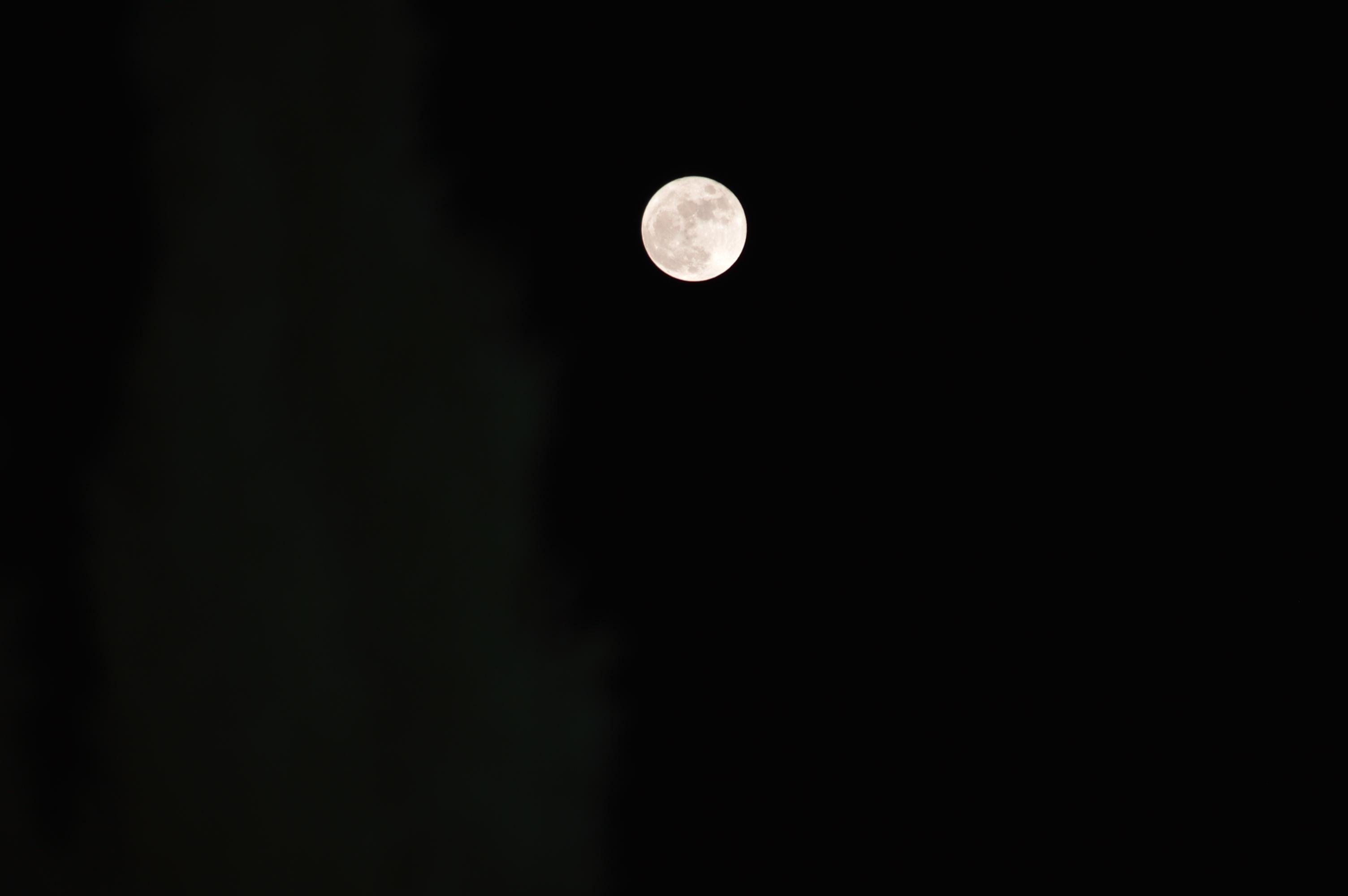 Light Sky Night Dark Evening Darkness Lighting Moon Full Moonlight Celestial Event