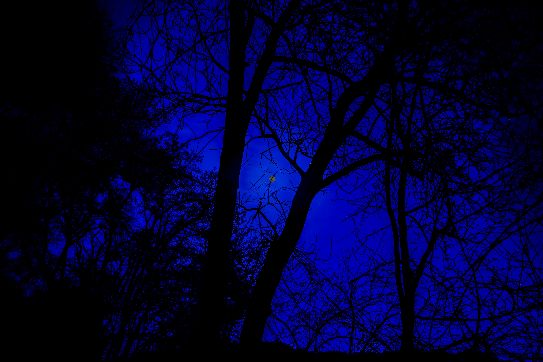 Free Images : light, texture, mystical, dark, line ...