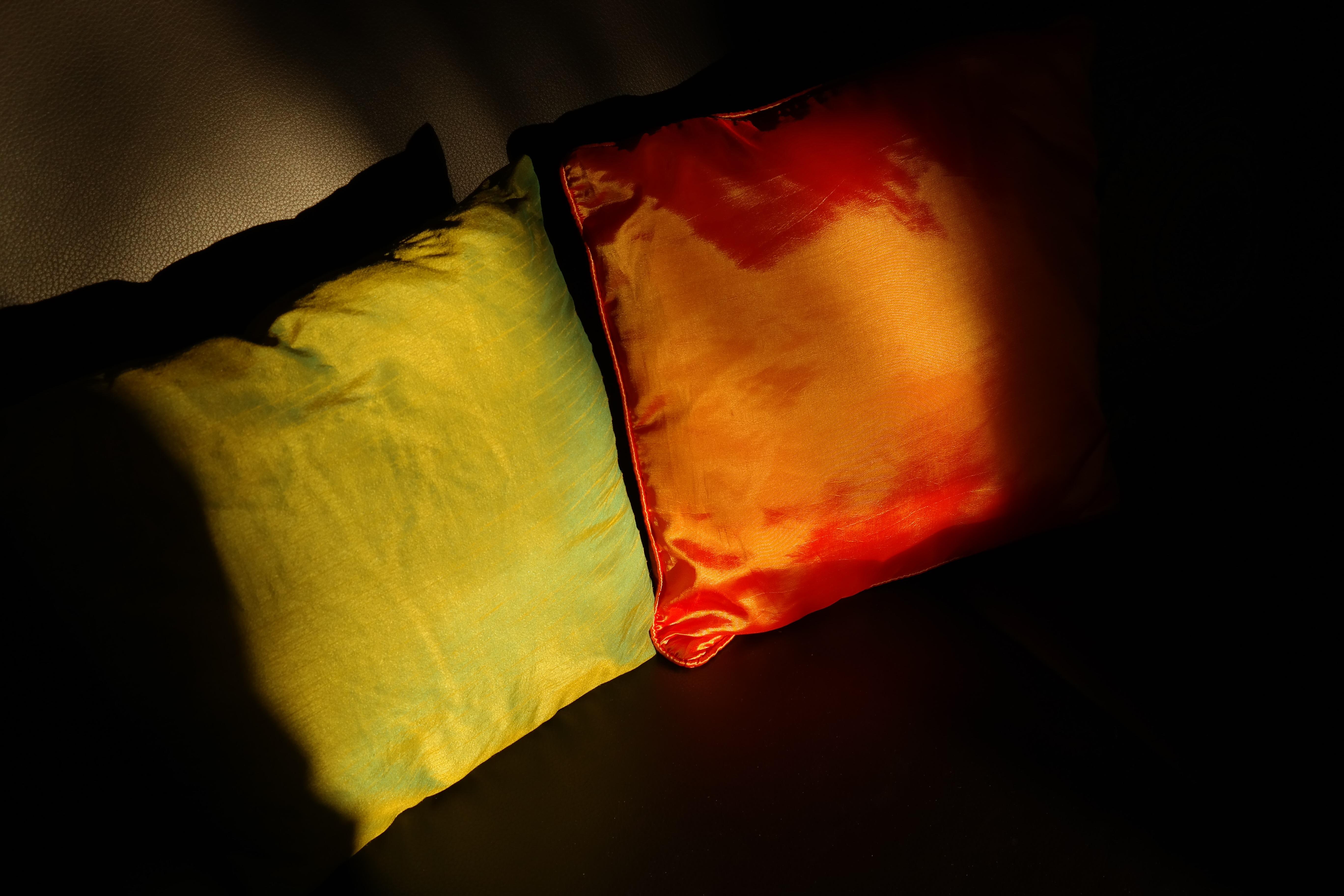 Free Images : light, sunlight, leaf, flower, petal, green, red ...