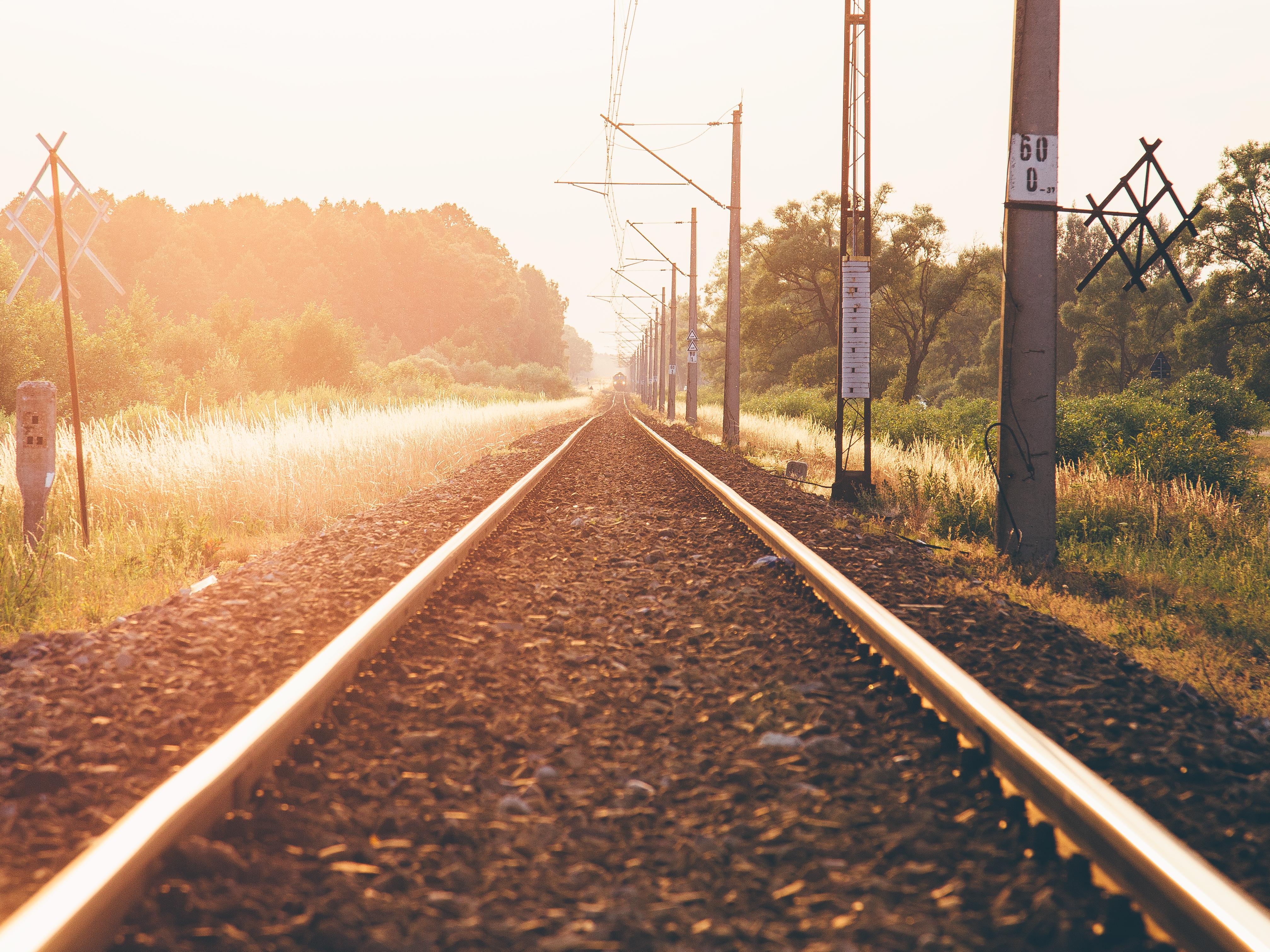 созревании картинка утром с поезда подходят