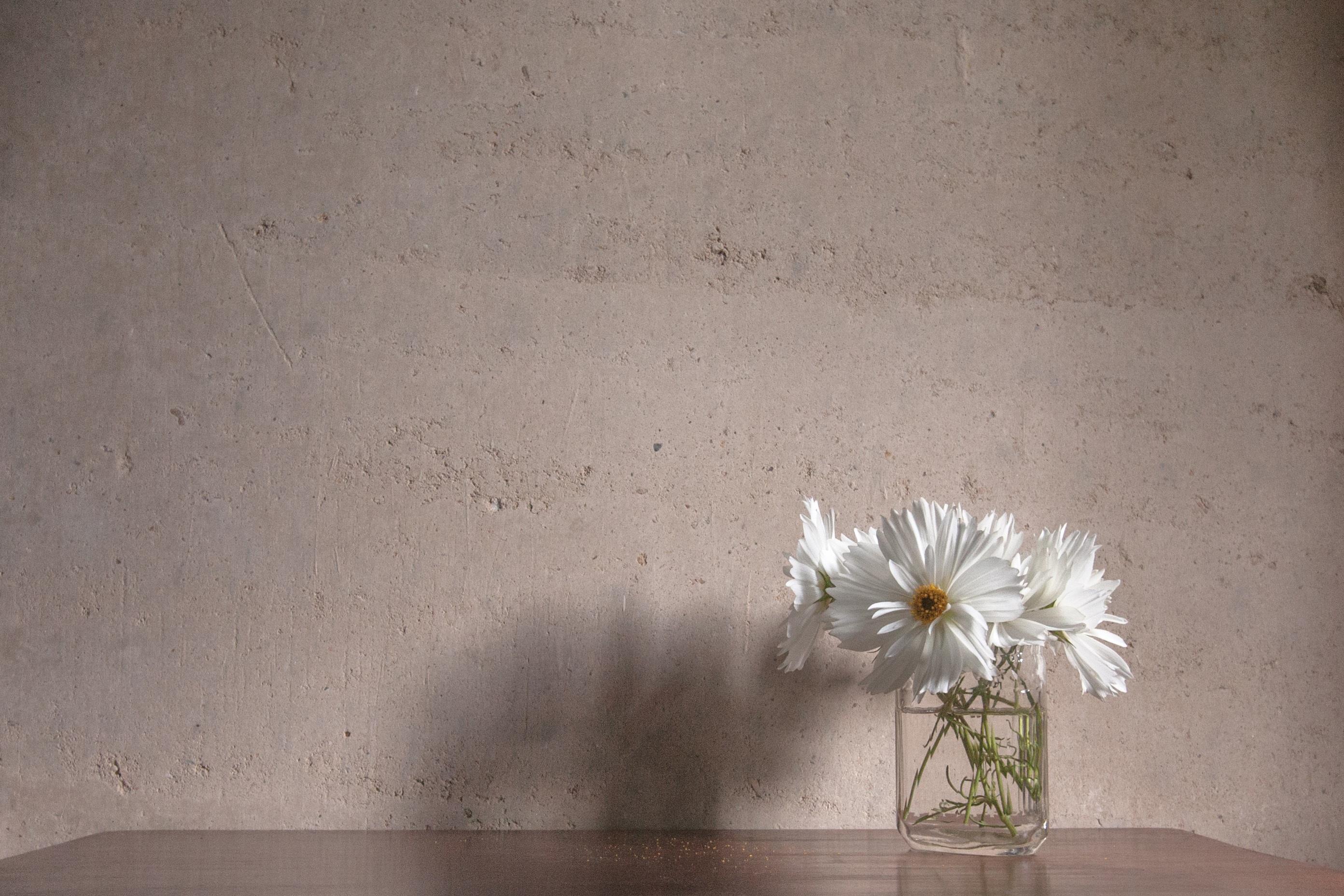 Free Images Light White Flower Floor Wall Ceiling Lighting
