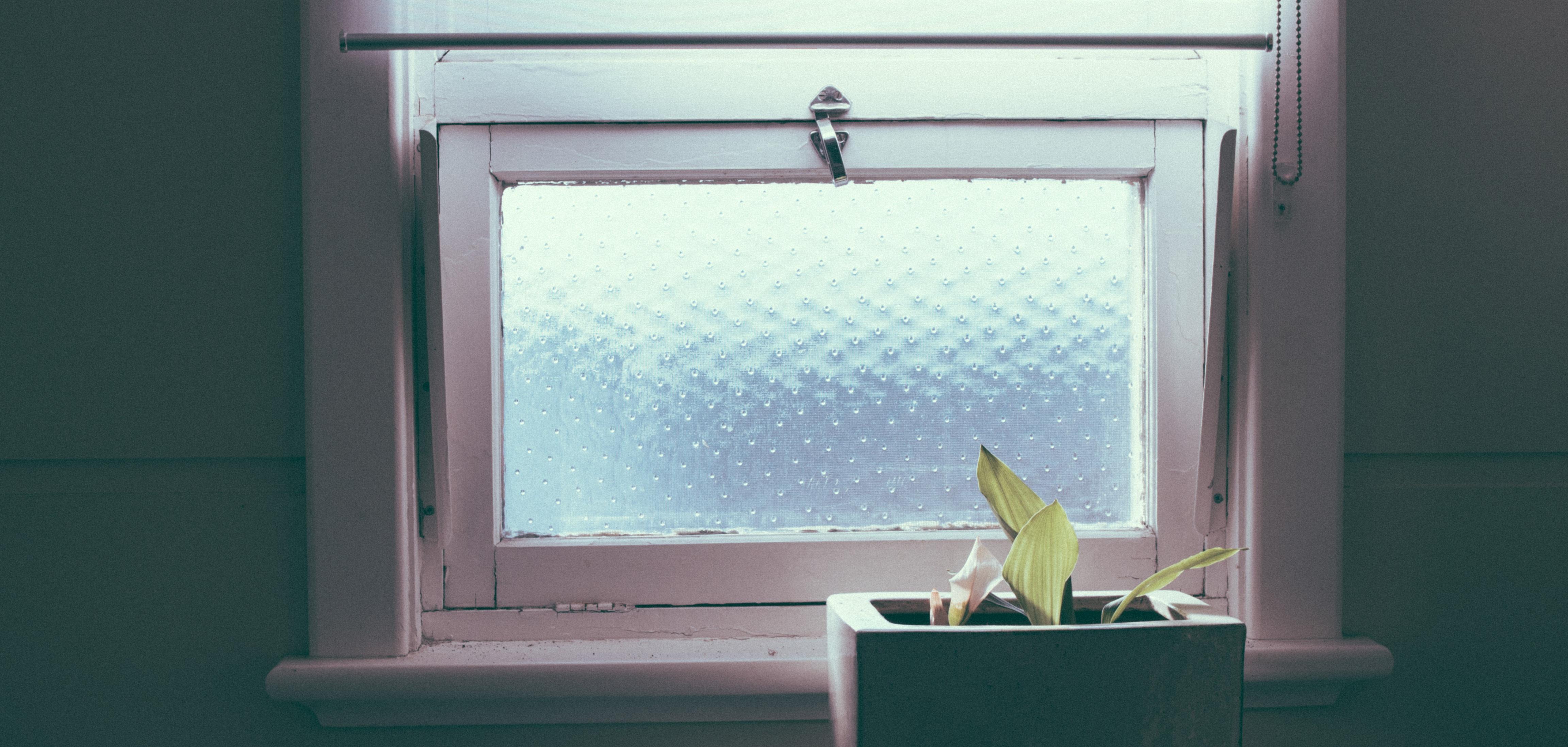 Gratuites lumi¨re blanc verre mur vert étag¨re bleu