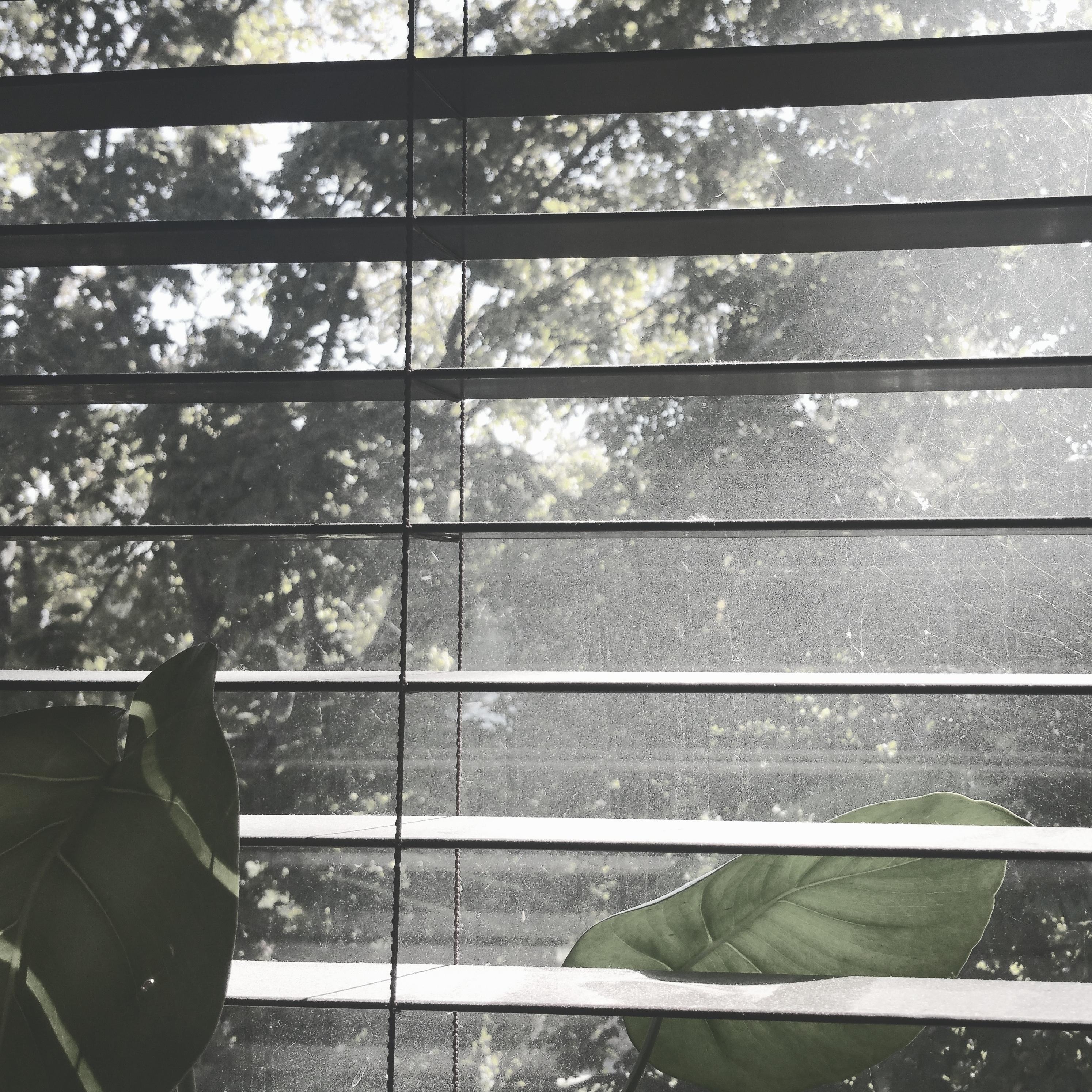 Kostenlose foto : Licht, Holz, Fenster, Glas, Mauer, Linie ...