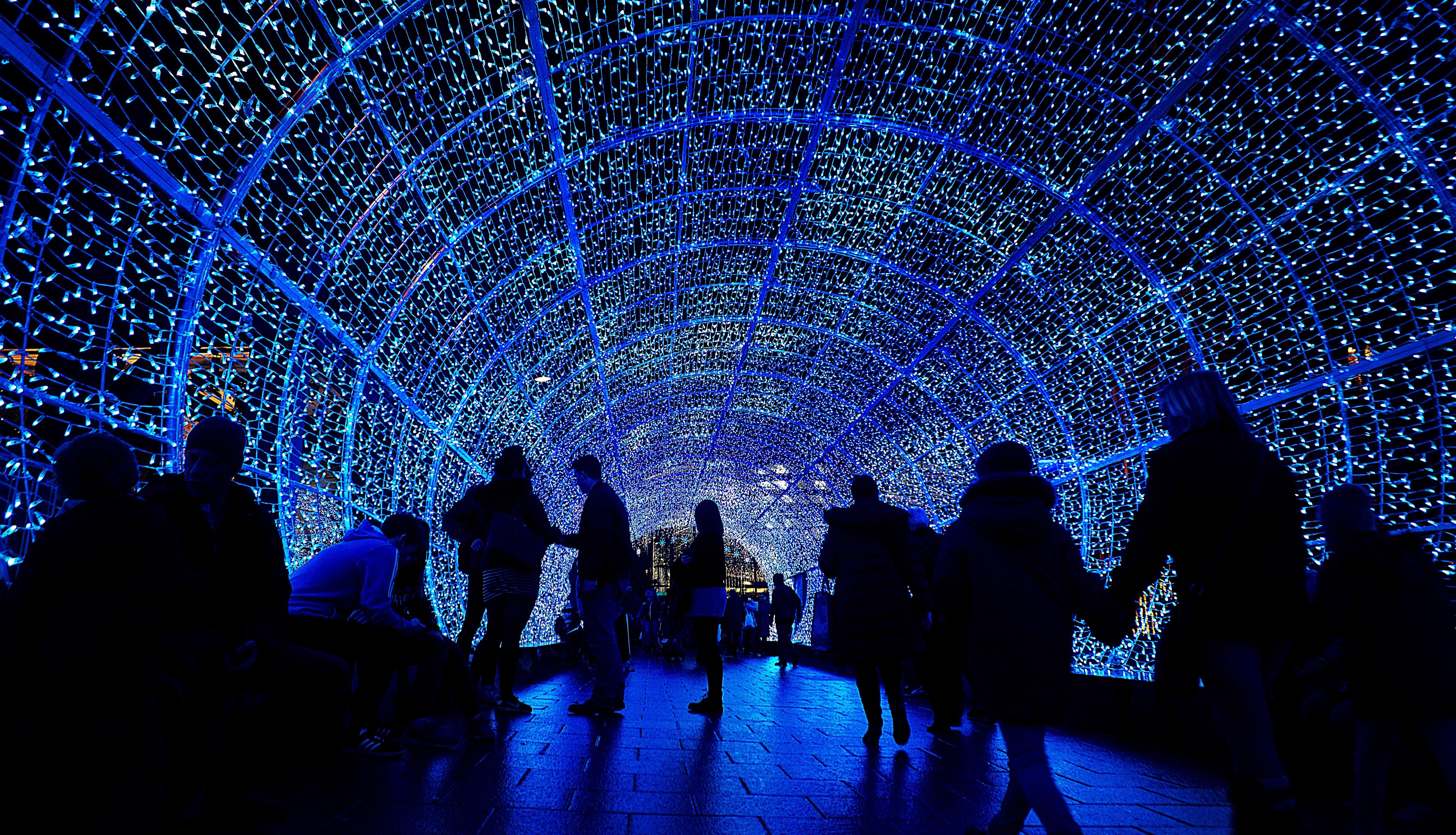 lights christmas street festive tunnel decorations xmas blue purple light lighting christmas lights darkness night tree
