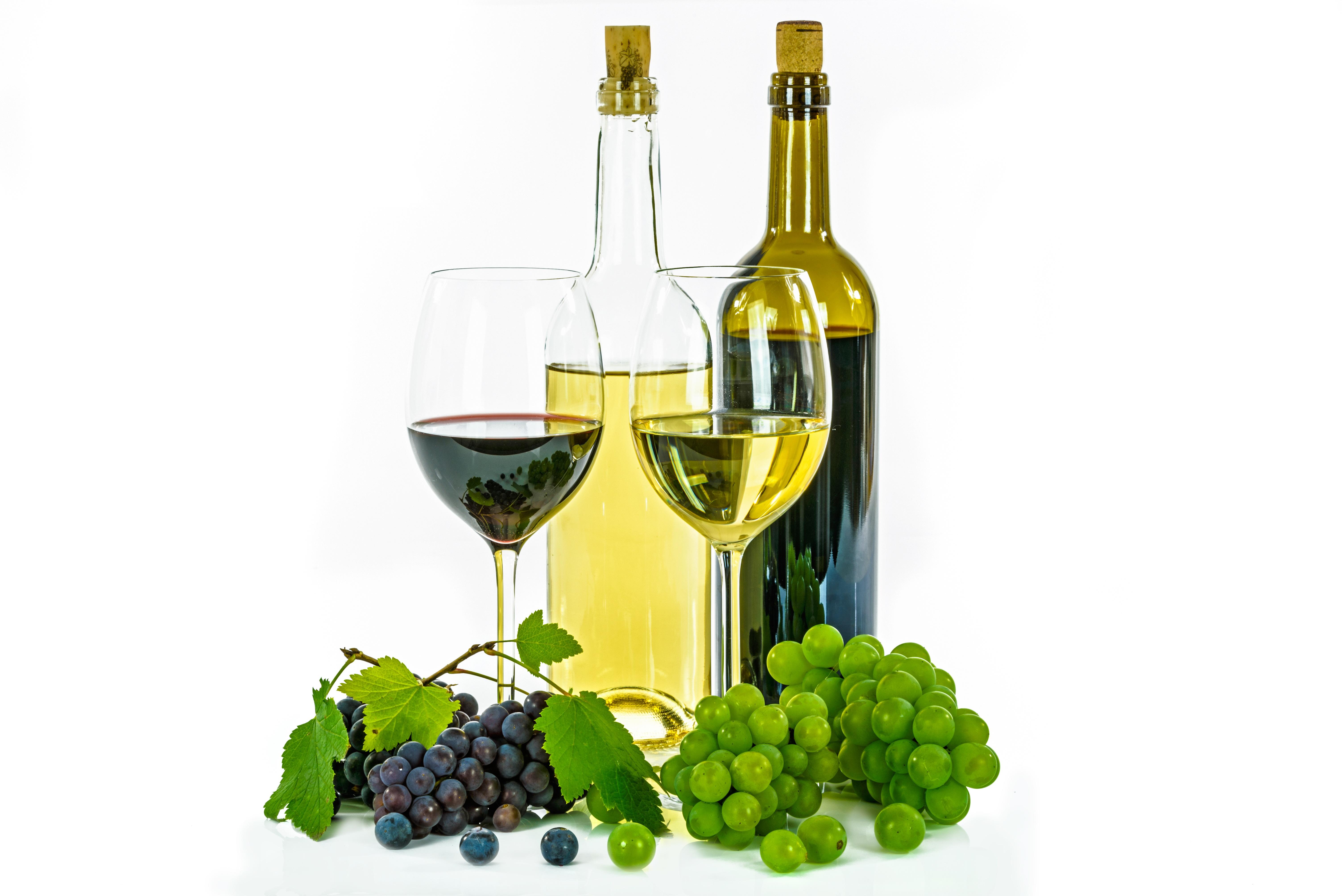 free images liquid grape vineyard fruit leaf france europe food green produce. Black Bedroom Furniture Sets. Home Design Ideas