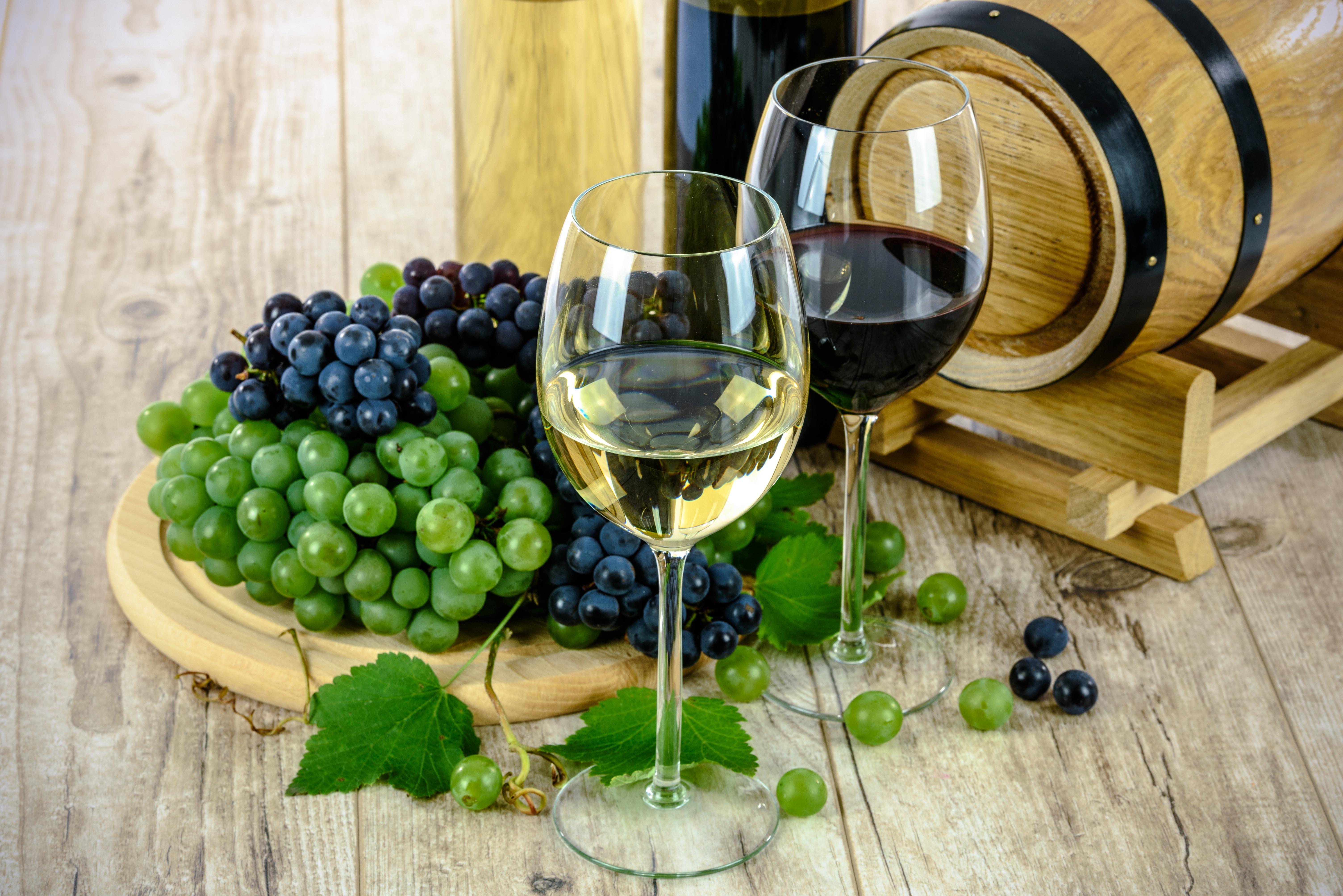 Single aktivitten vitis - Single lokale in niedernsill - rockmartonline.com 2020