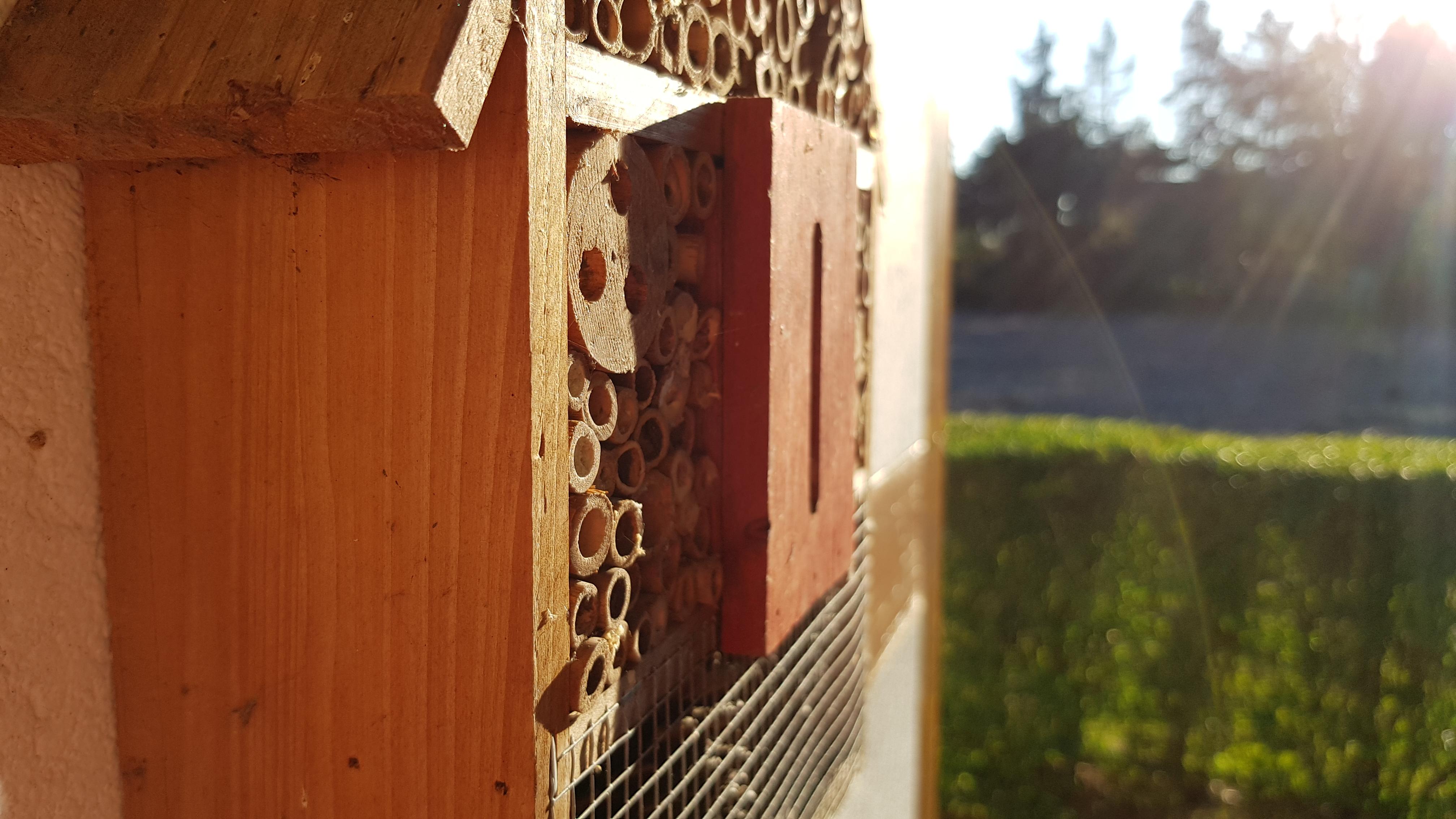 Fotoğraf Küçük Ev Güneş Kahverengi Kırmızı Duvar Ahşap Boyama