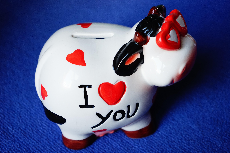 Gambar Jantung Merah Persahabatan Mainan Kasih Sayang Keren Kacamata Lucu Celengan Hari Valentine Aku Cinta Kamu Beruntung Babi 6000x4000 1108875 Galeri Foto Pxhere