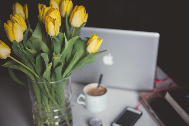 Открытка тюльпаны в чашке