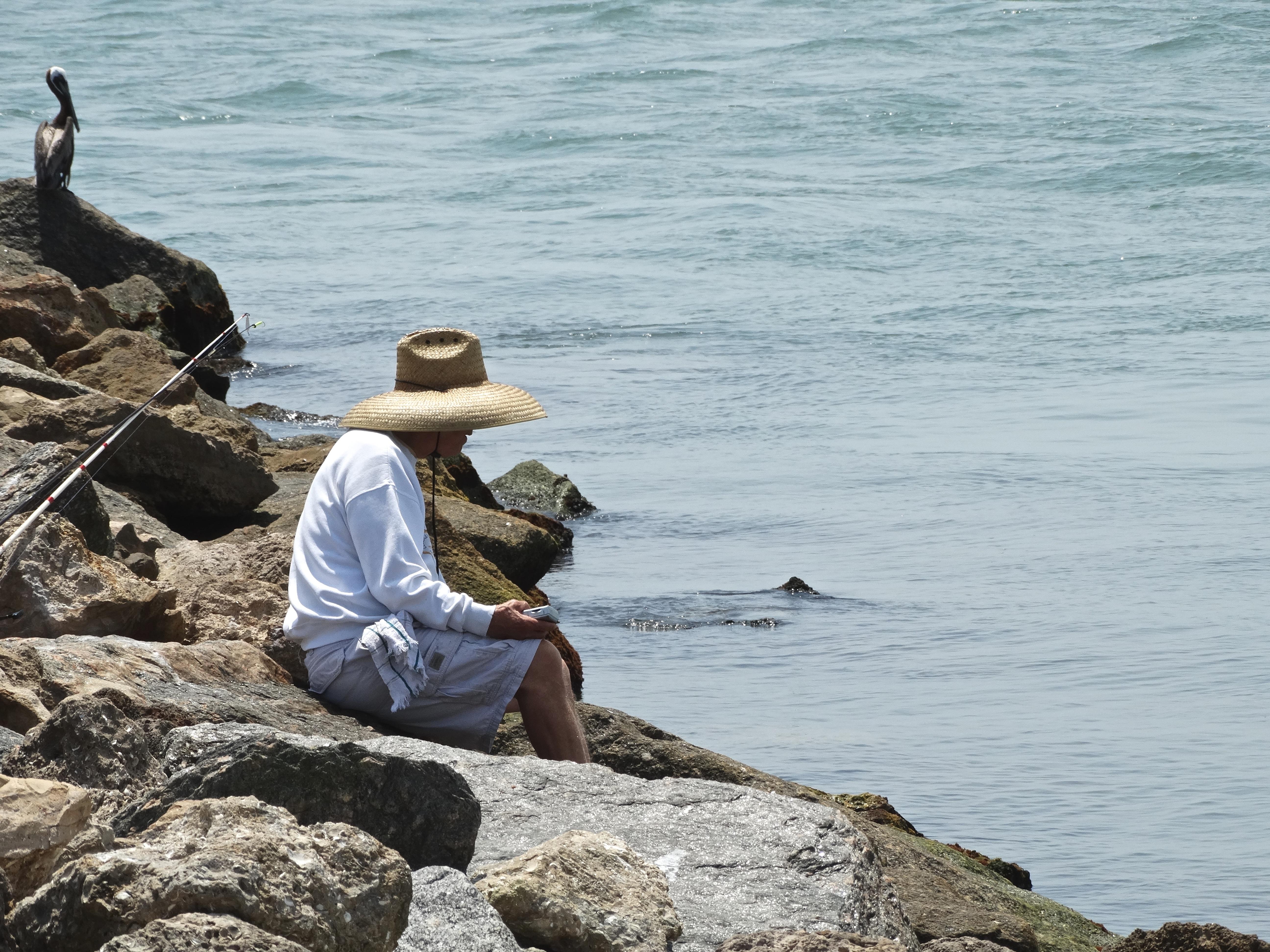 одессе картинки побережья и людей наутилус это