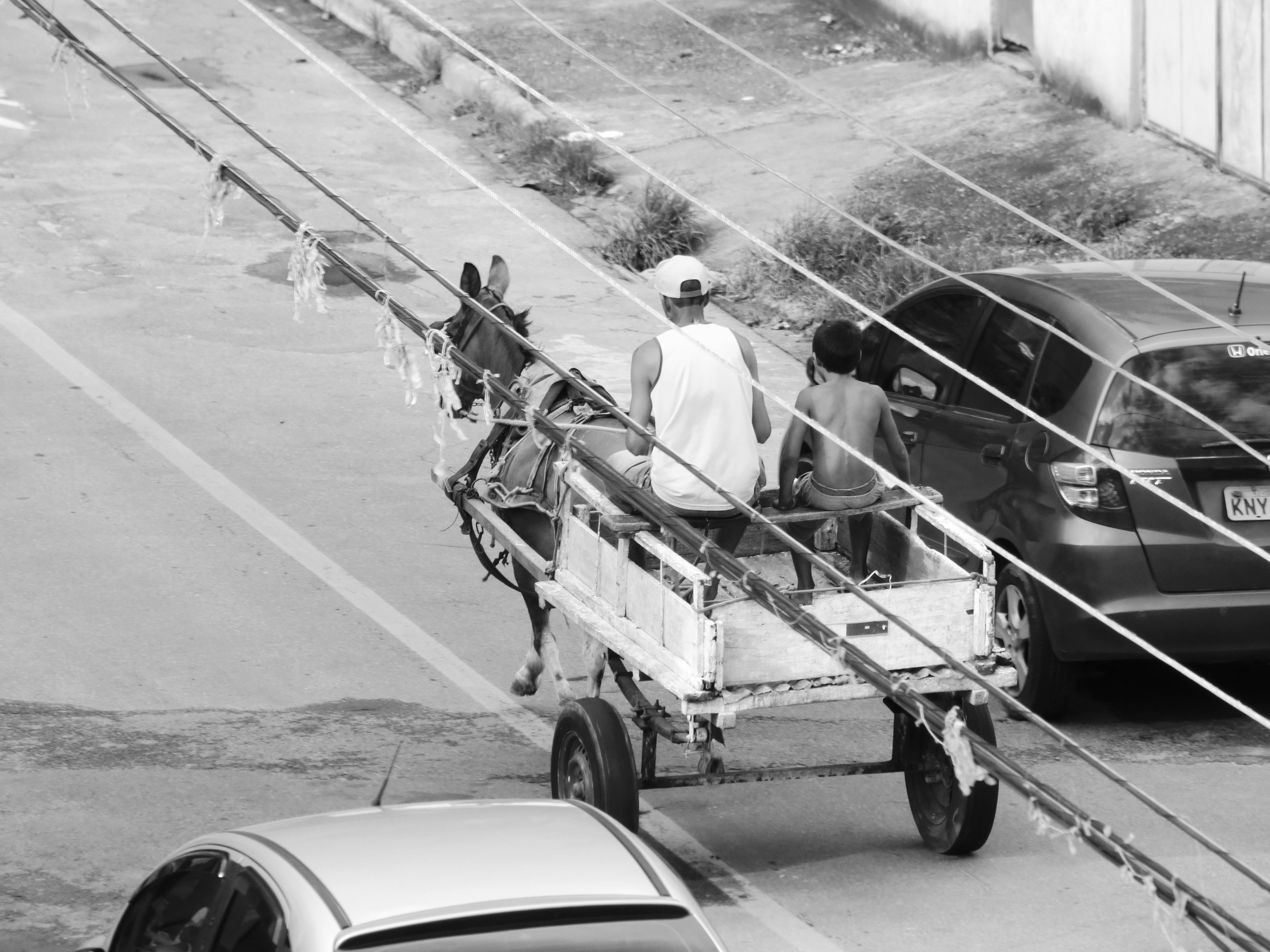 Gambar Manusia Hitam Dan Putih Mobil Jerami Bidang Tanah