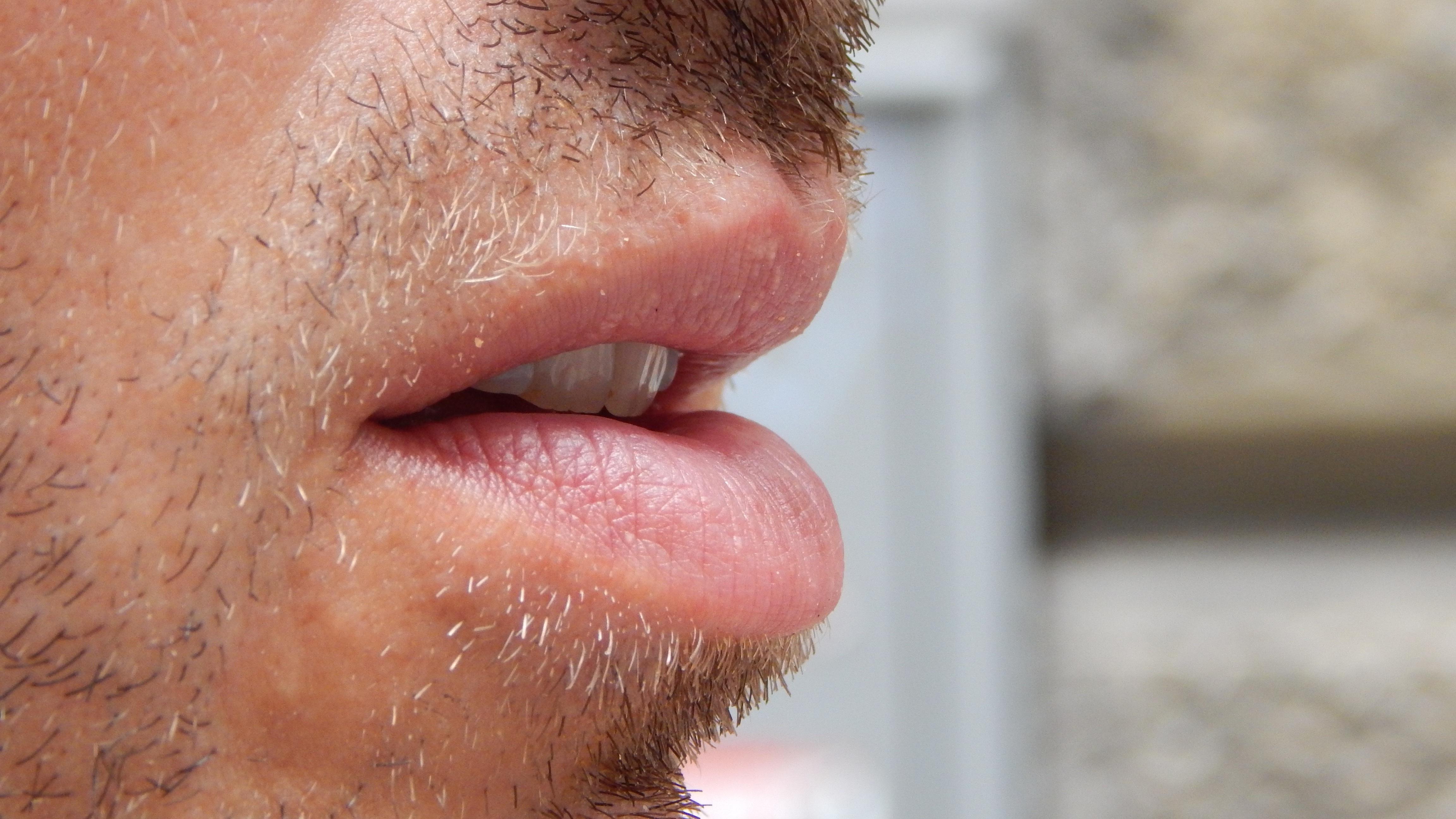 Fotos gratis : hombre, oreja, labio, boca, hablar, de cerca, cuerpo ...