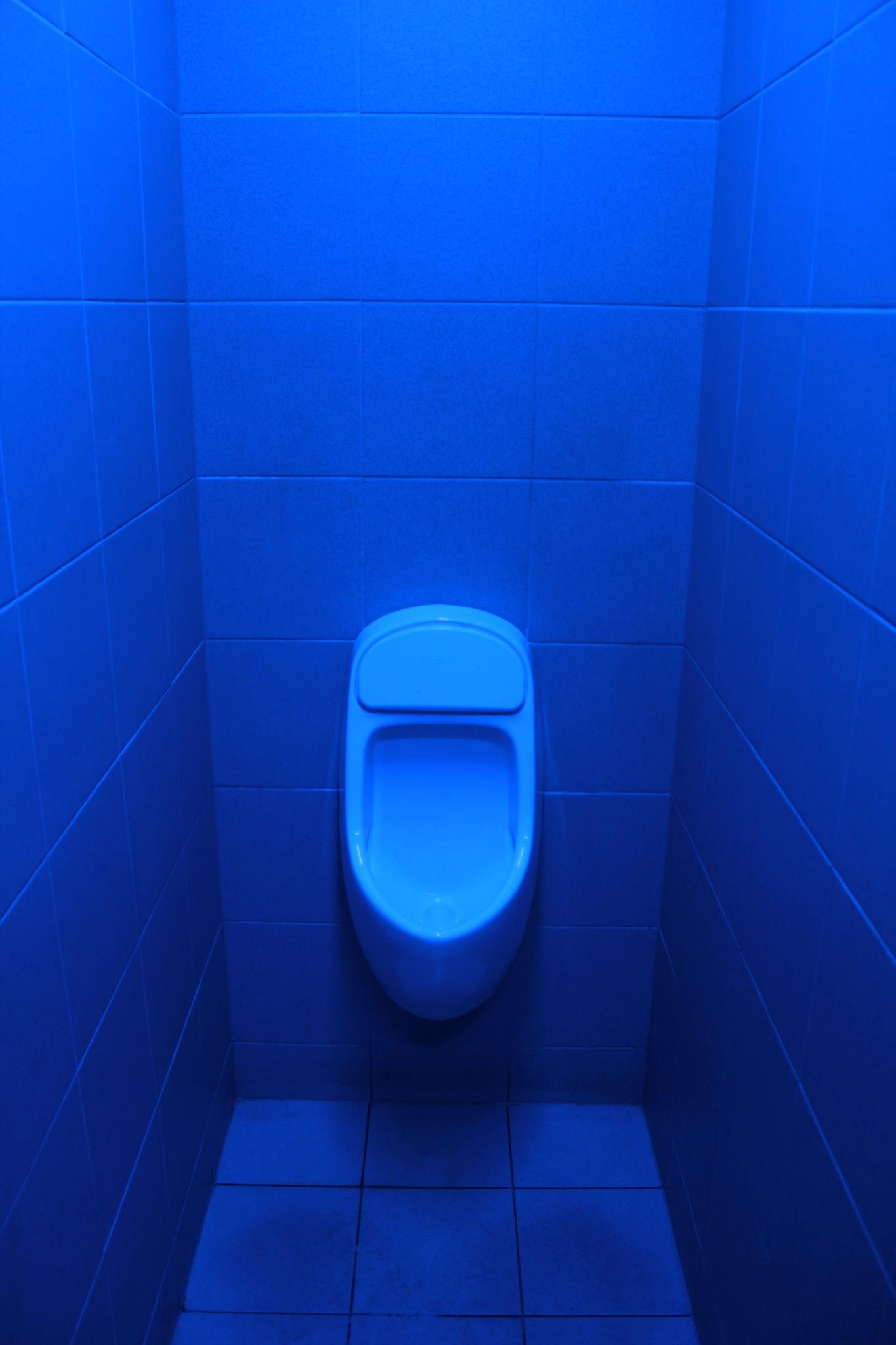 Дизайн с синим унитазом
