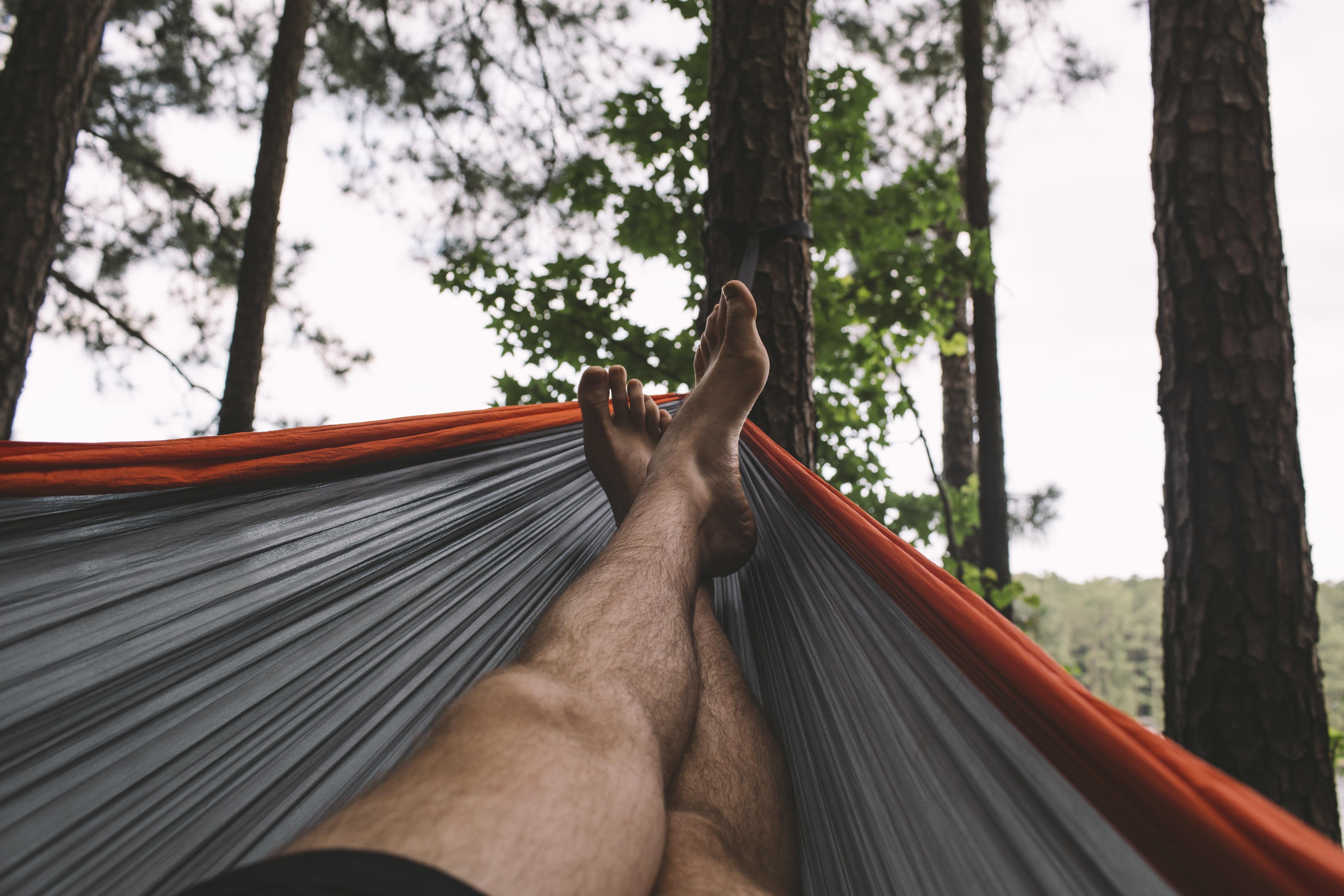 Images Gratuites : homme, forêt, pied, du repos, hamac ...