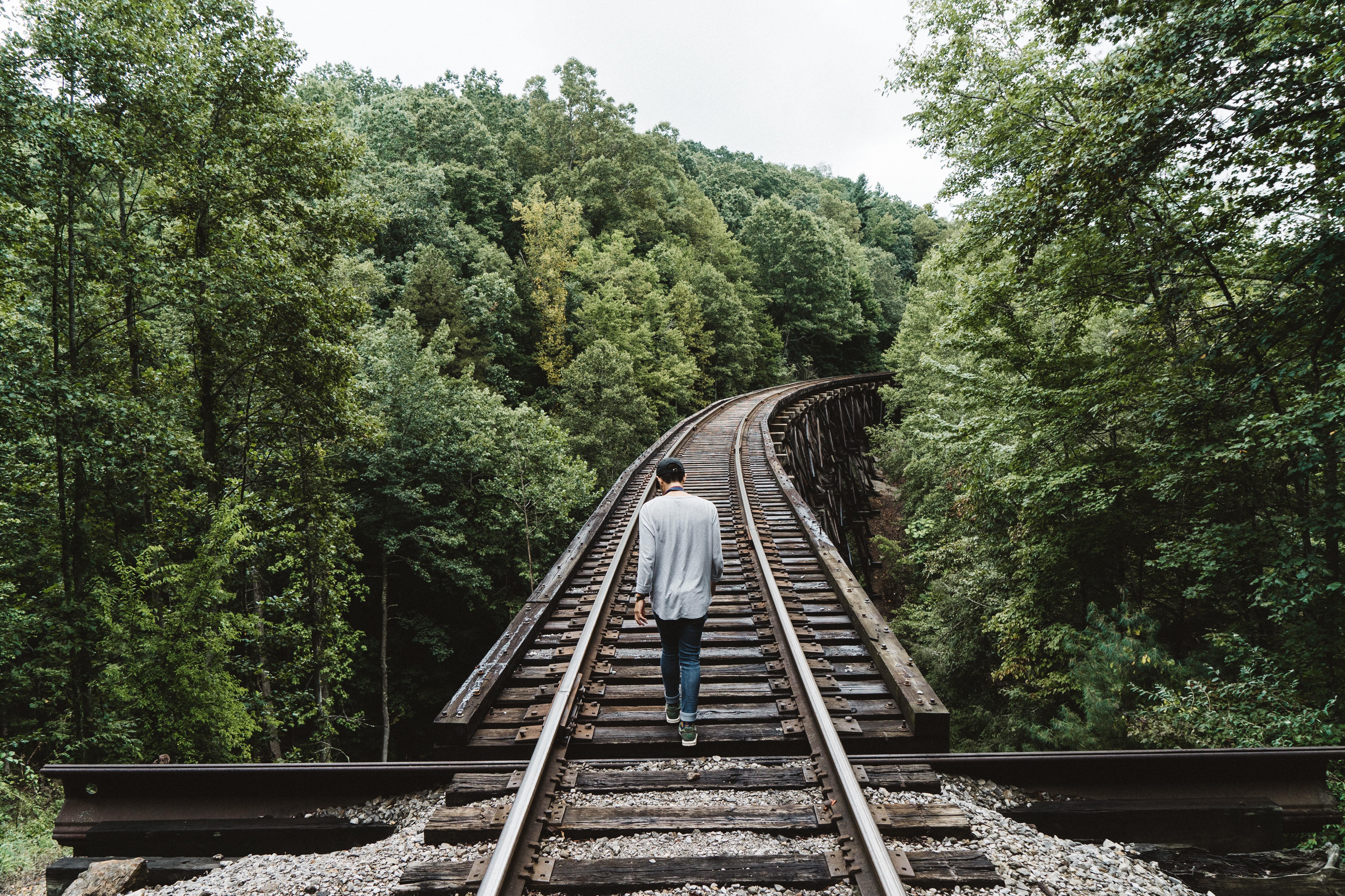голод дает картинки поездов уходящих в путь одно застолье меня