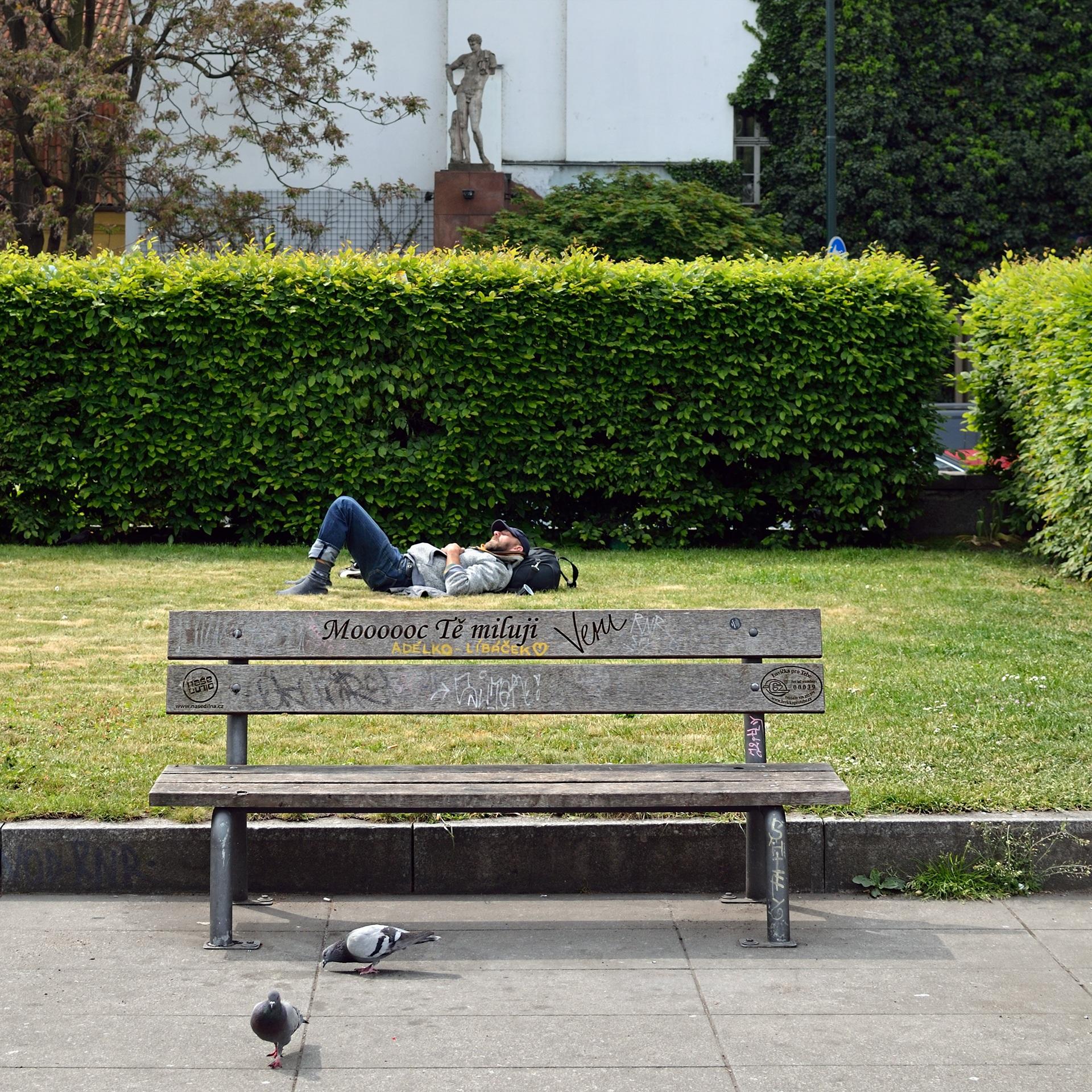 Fotos gratis : hombre, césped, banco, parque, mueble, jardín ...