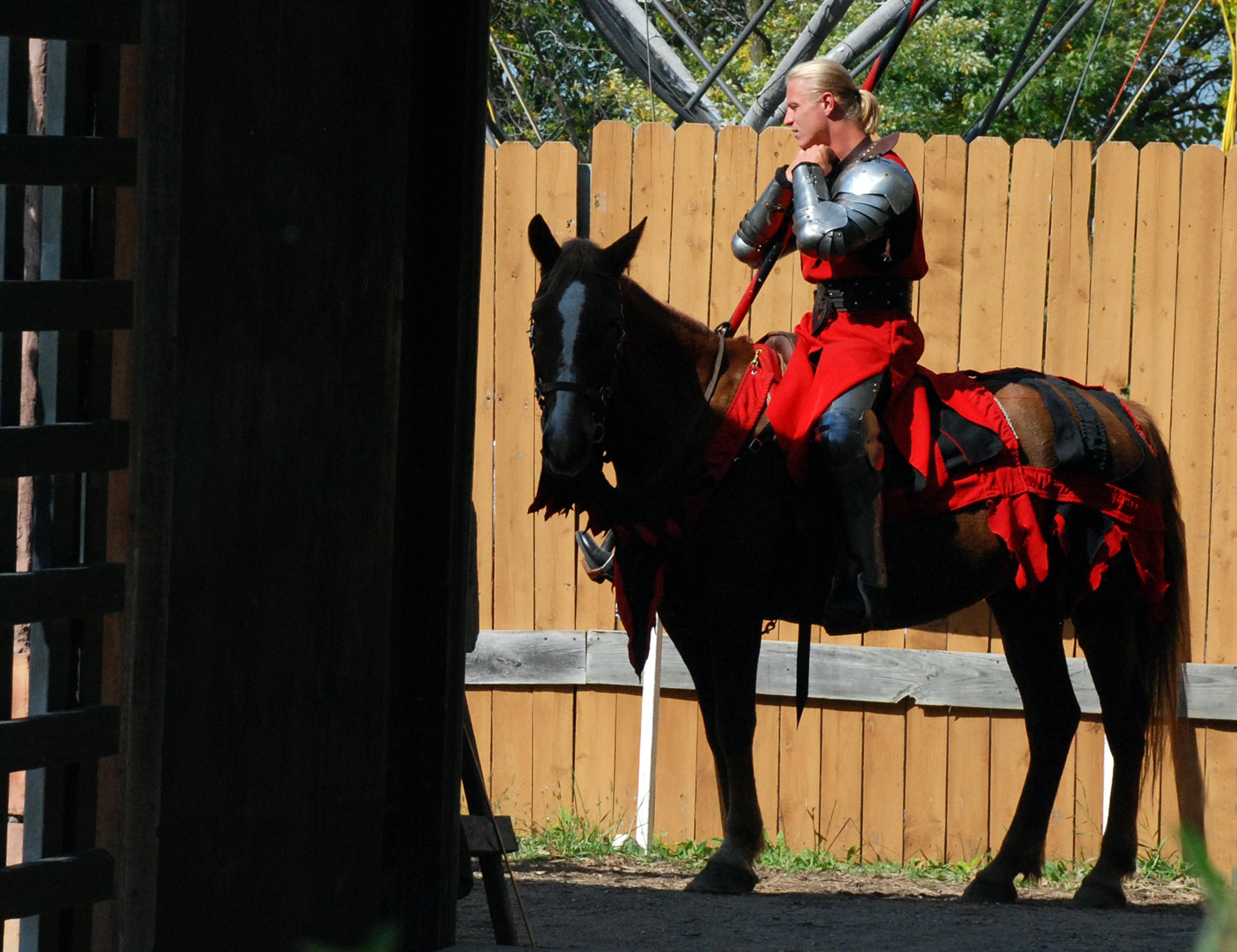 man horseback horse stallion riding medieval knight history jockey costume armour equestrianism horse like mammal english & Free Images : man horseback stallion medieval knight history ...