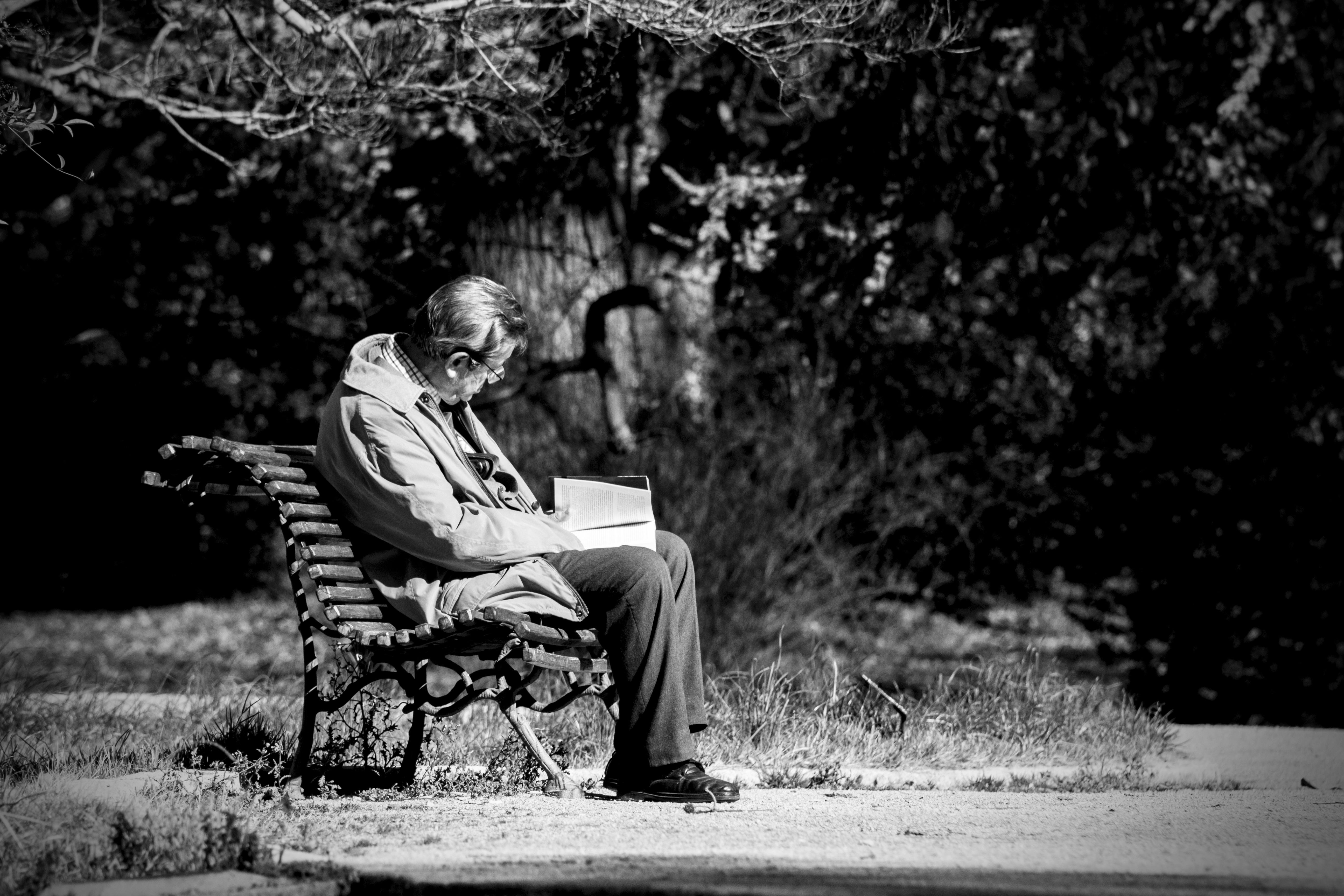 Mujer Leyendo El Libro En Blanco En El Jardín: Free Images : Man, Landscape, Tree, Nature, Forest, Book