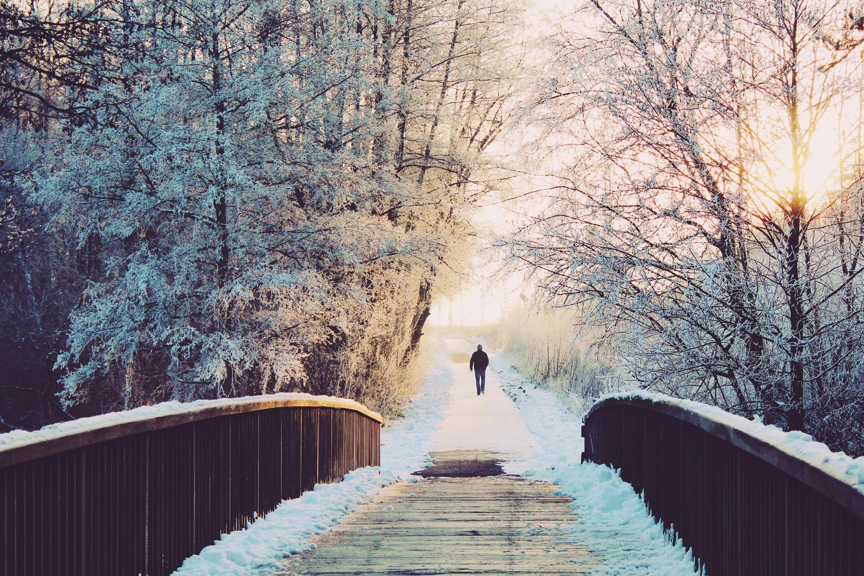 масса зимняя мостовая картинки ландыши при взгляде