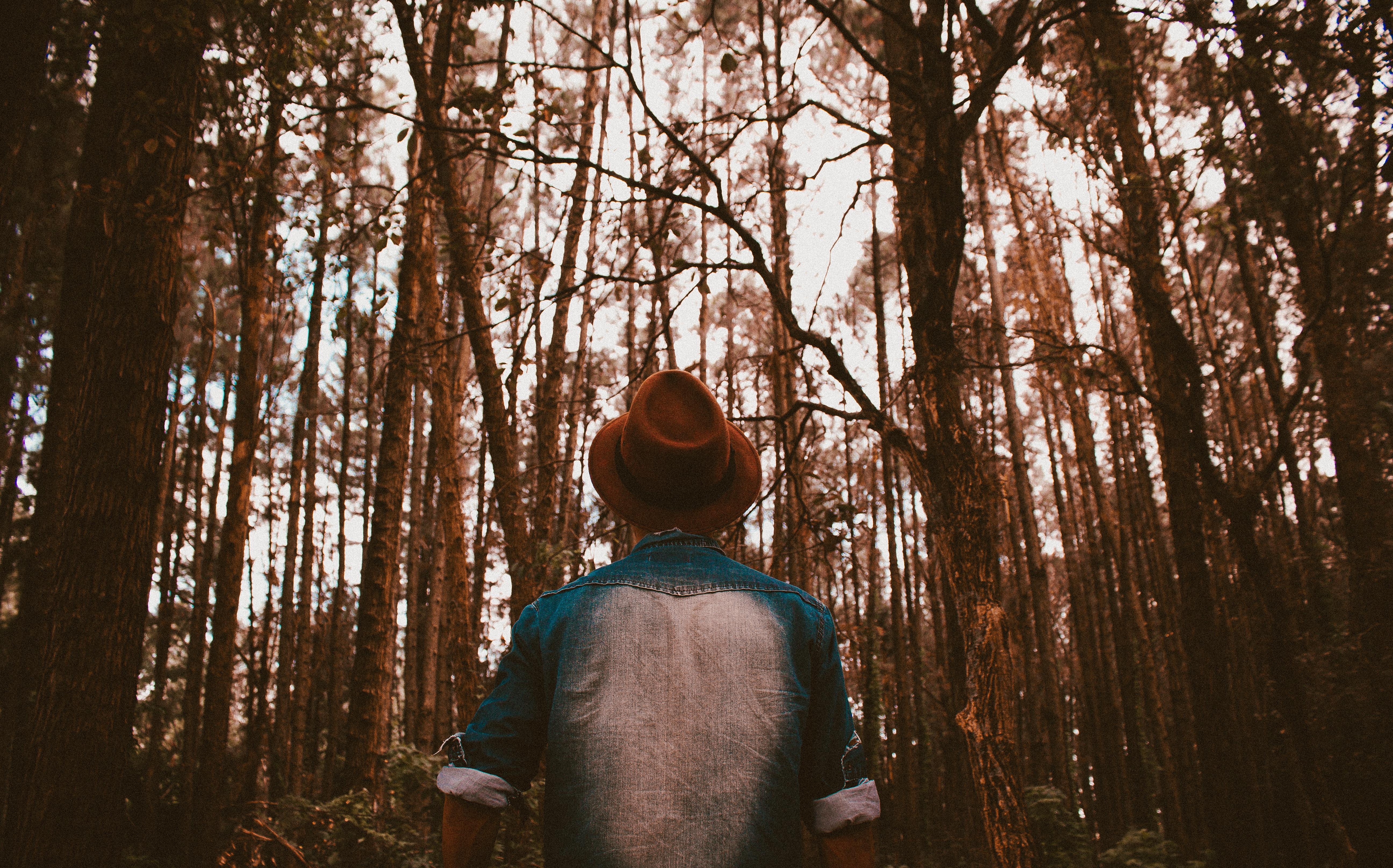 красивые картинки мужчина лес фото одна