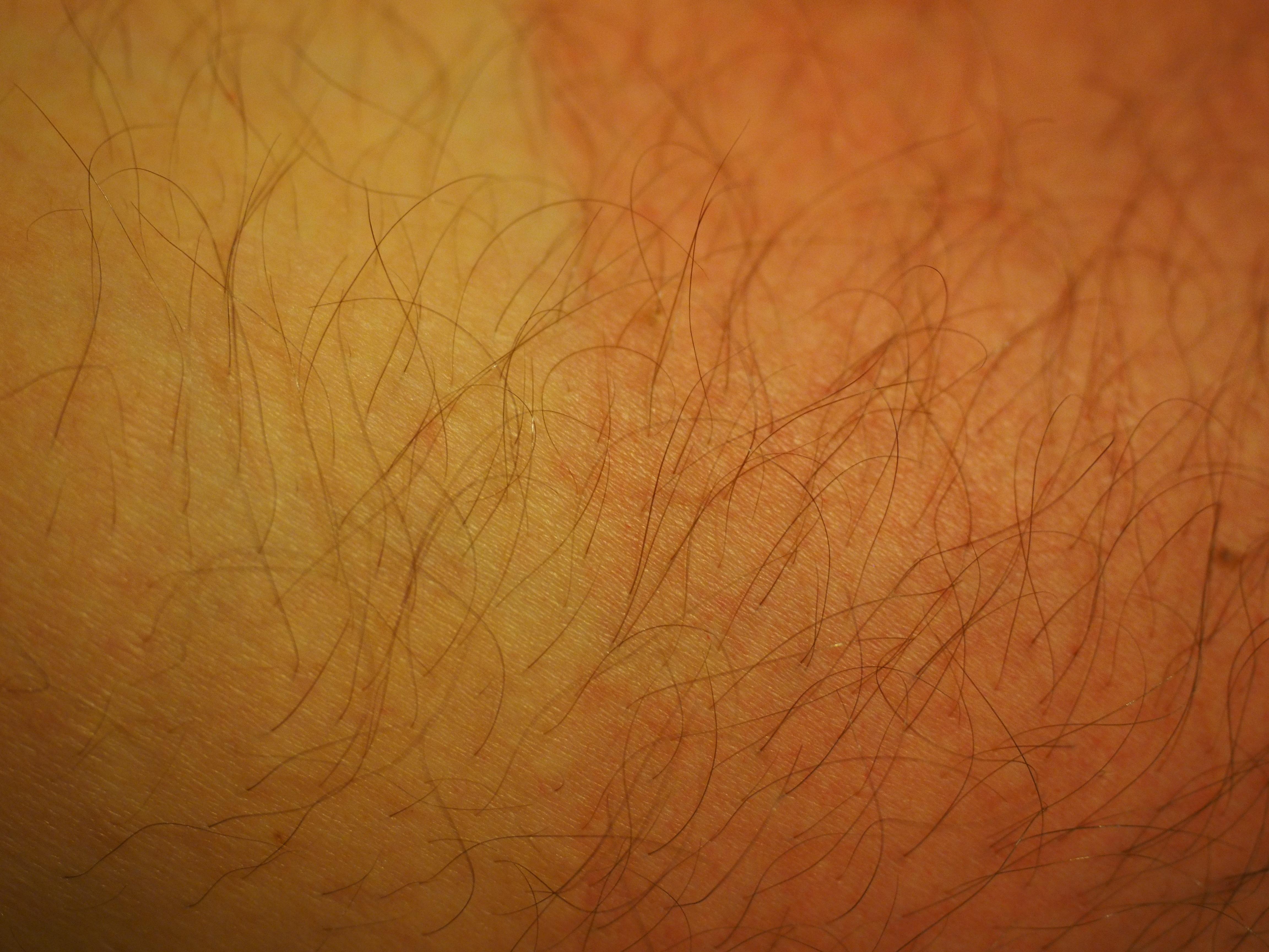 Free Images Man Wood Sun Hair Texture Leaf Floor