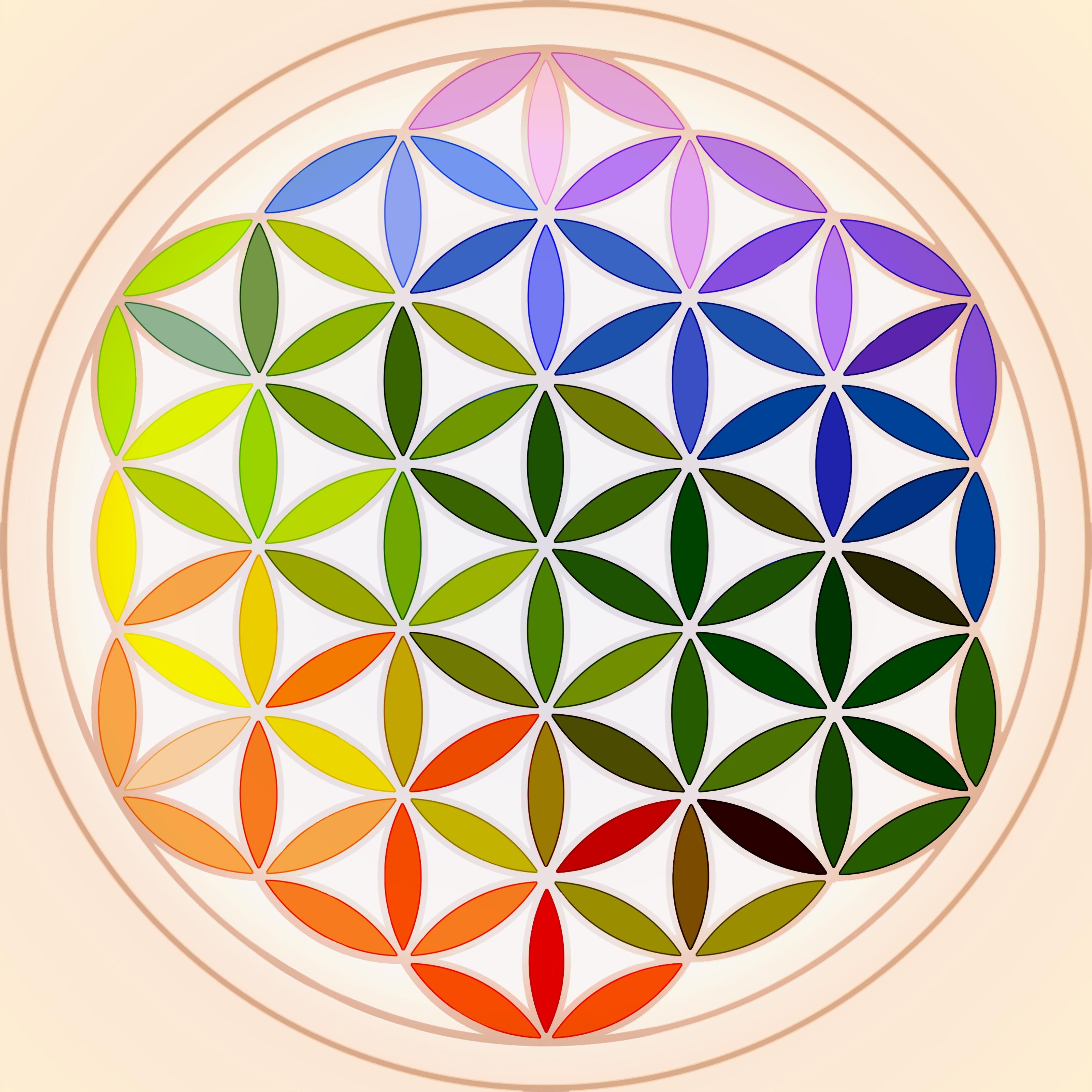 Kostenlose Foto Mandala Bunt Geometrisch Regenbogen Unendlich