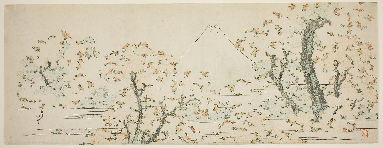 Fotoğraf Harita çiçek Boyama Resim 3000x1163 1461205