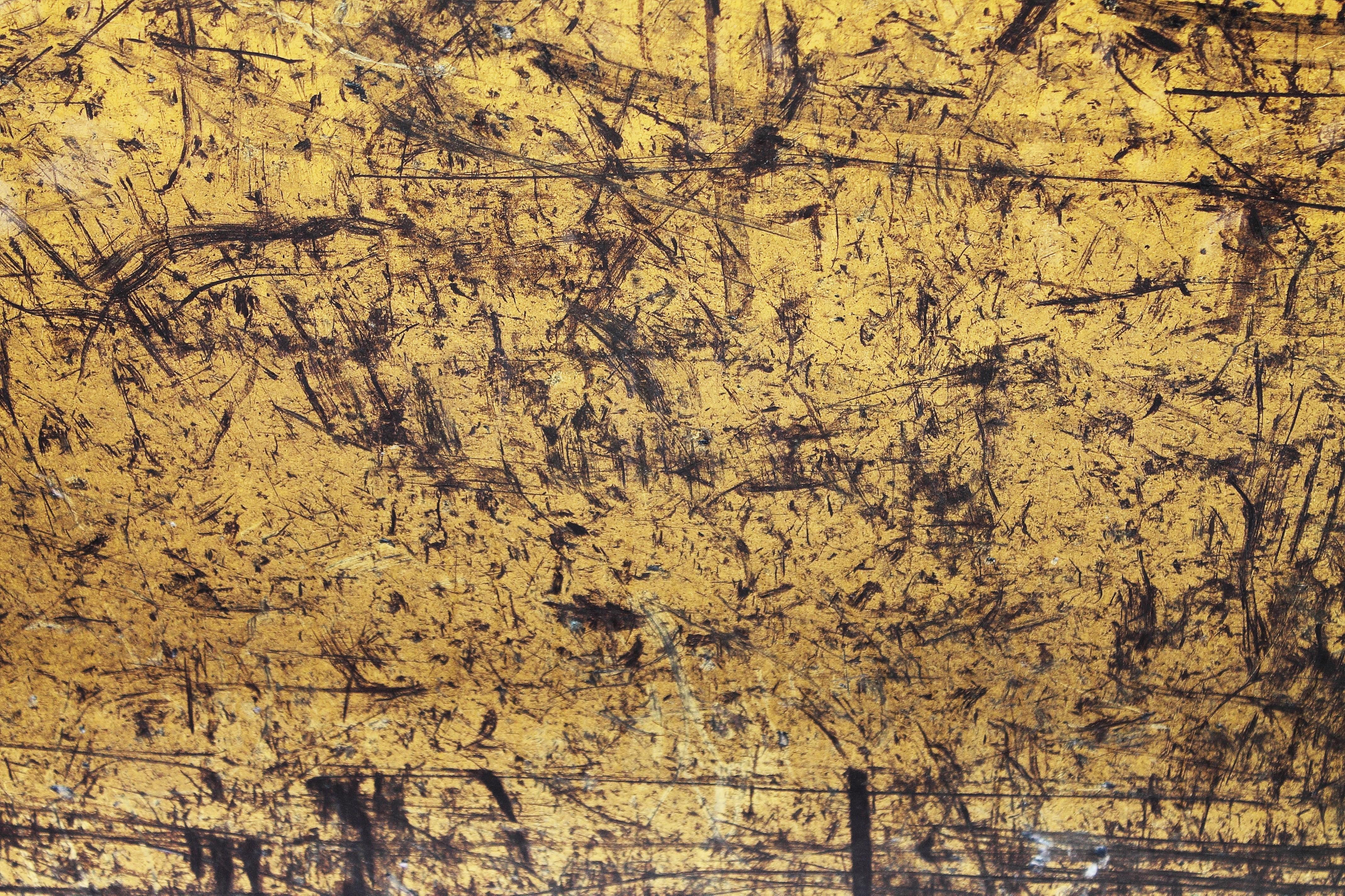 图片素材 金属 划伤 质地 钢 生锈 工作 旧 科 树 天空 模式