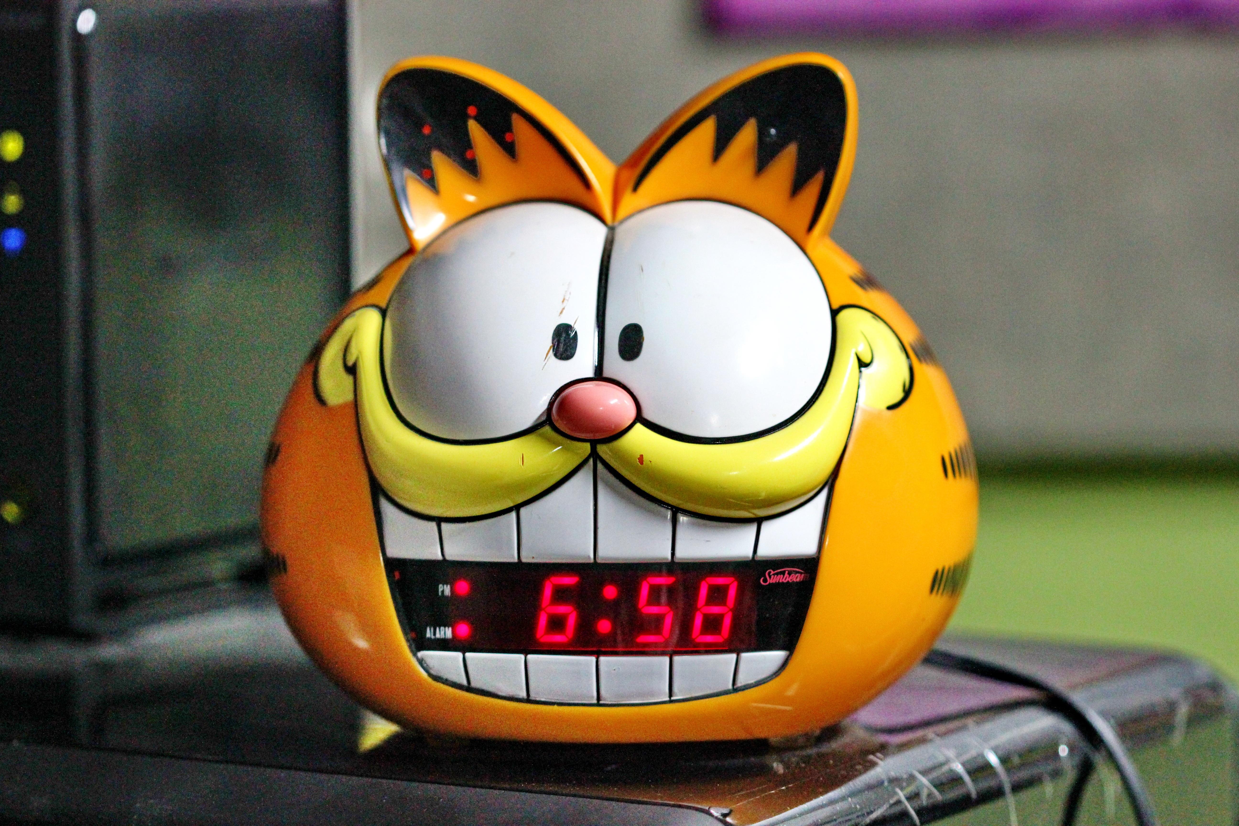 Gambar Pagi Jam Waktu Imut Alarm Makanan Kucing Kuning