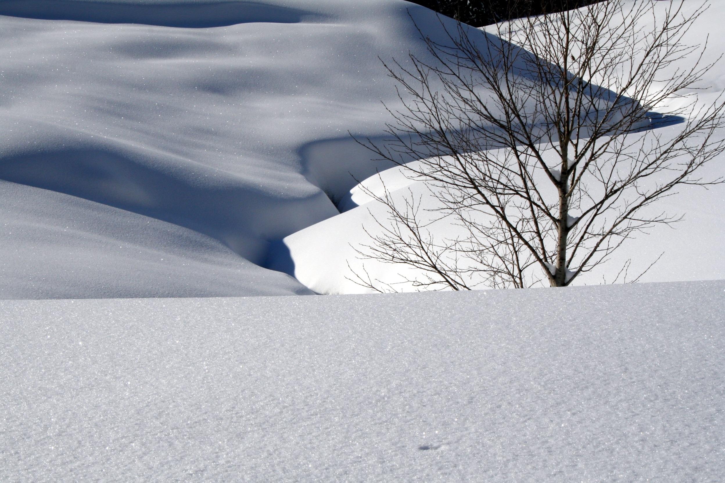 картинка с снегом что называется доступа подходят лишь