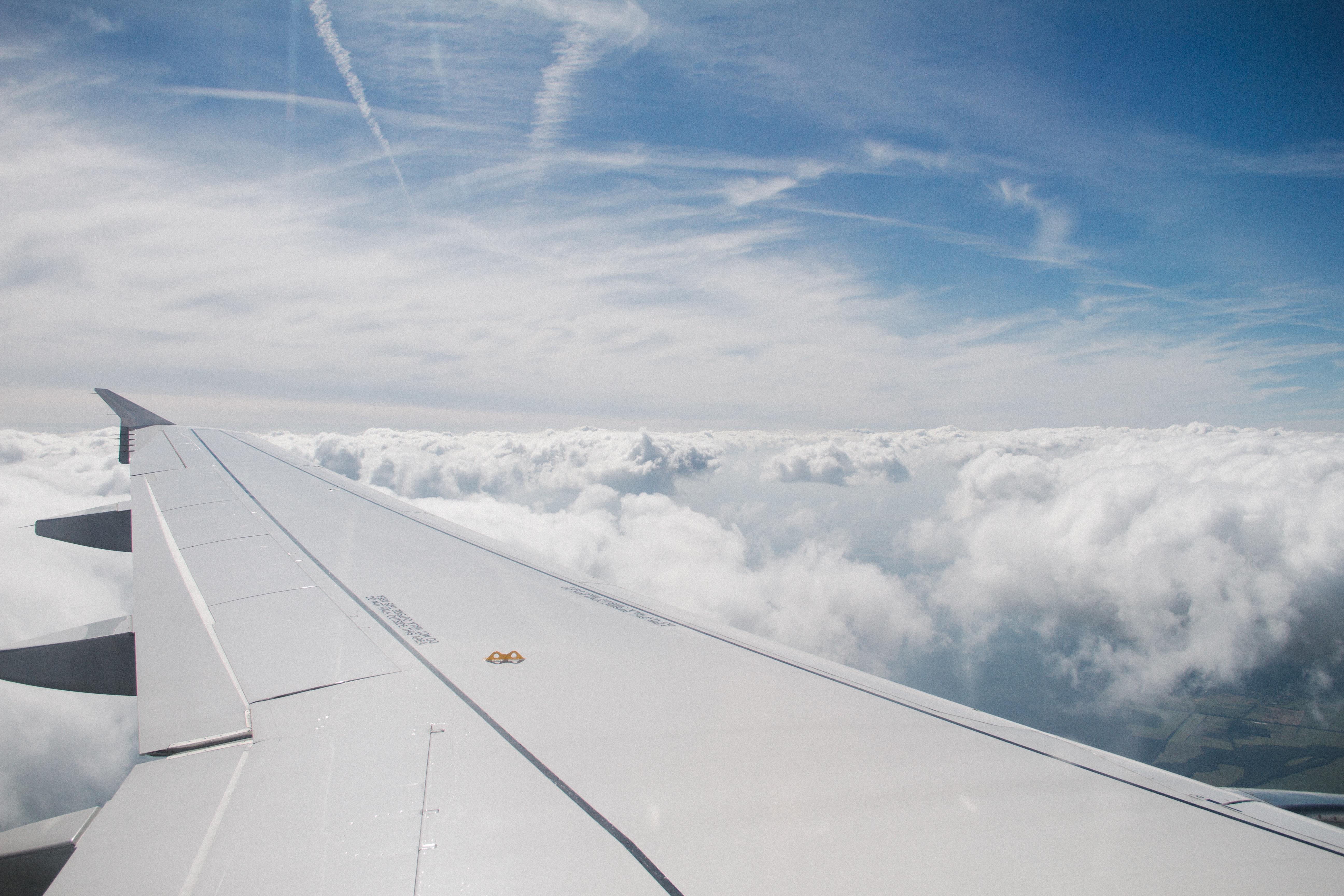 новосибирск прибыло картинки самолет в небе зимой еще кто-то, кто