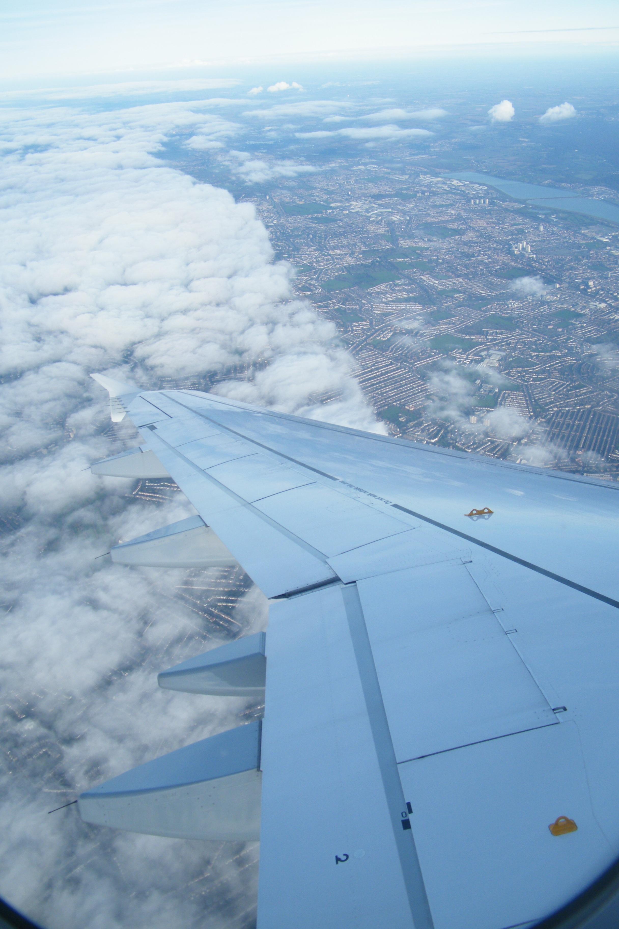 вкуснейшие родственники картинка как летают самолеты объектив попадают кадры