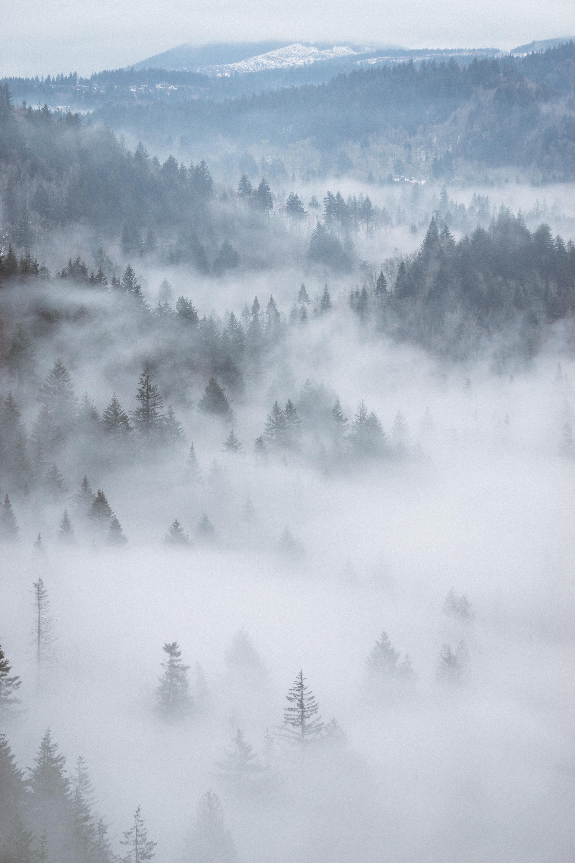 54 Gambar Awan Kabut Terlihat Keren