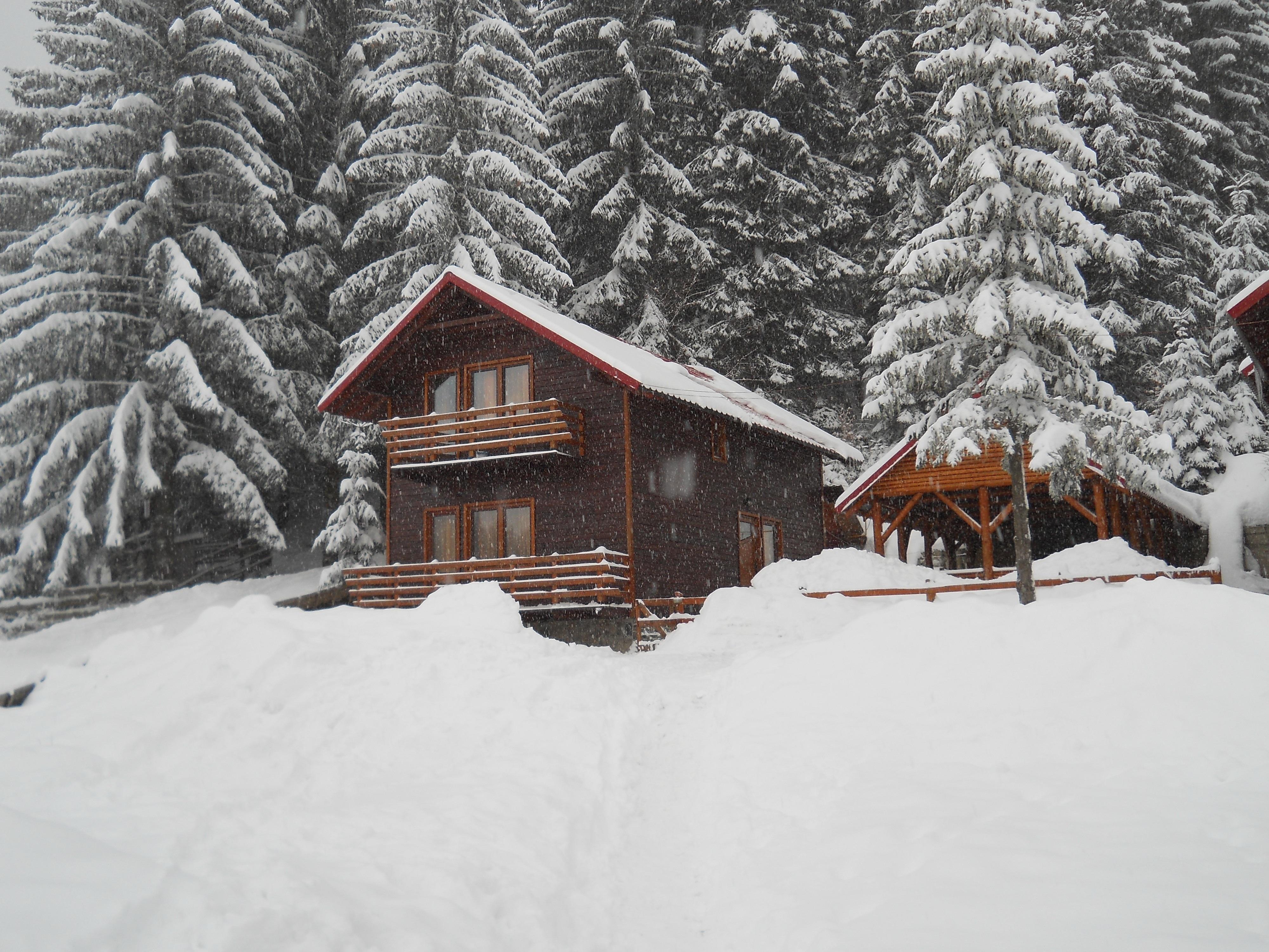 Fotos gratis monta a caba a clima temporada tormenta de nieve pista fen meno geol gico - Cabana invierno ...