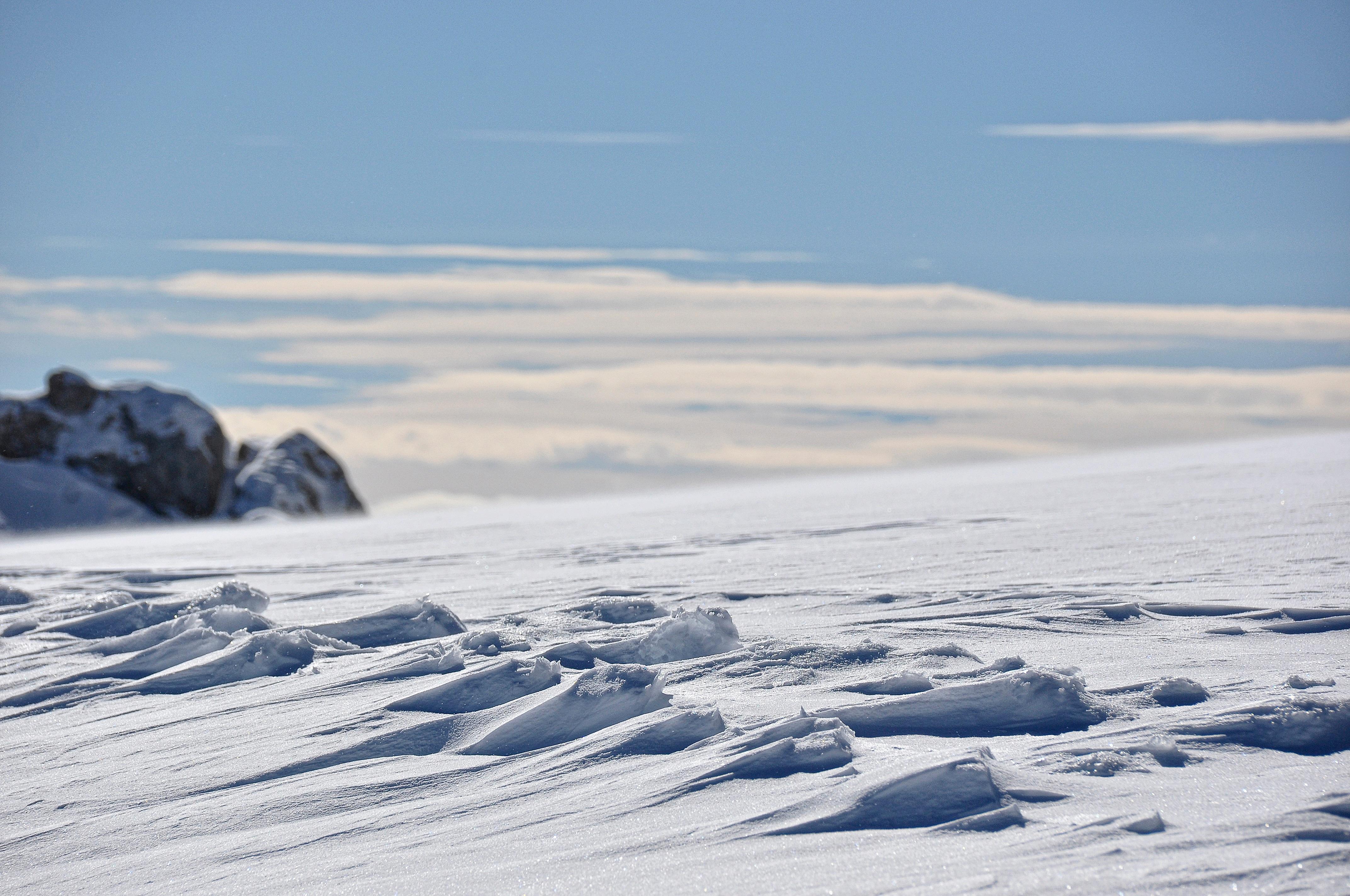 Картинки арктических пустынь россии