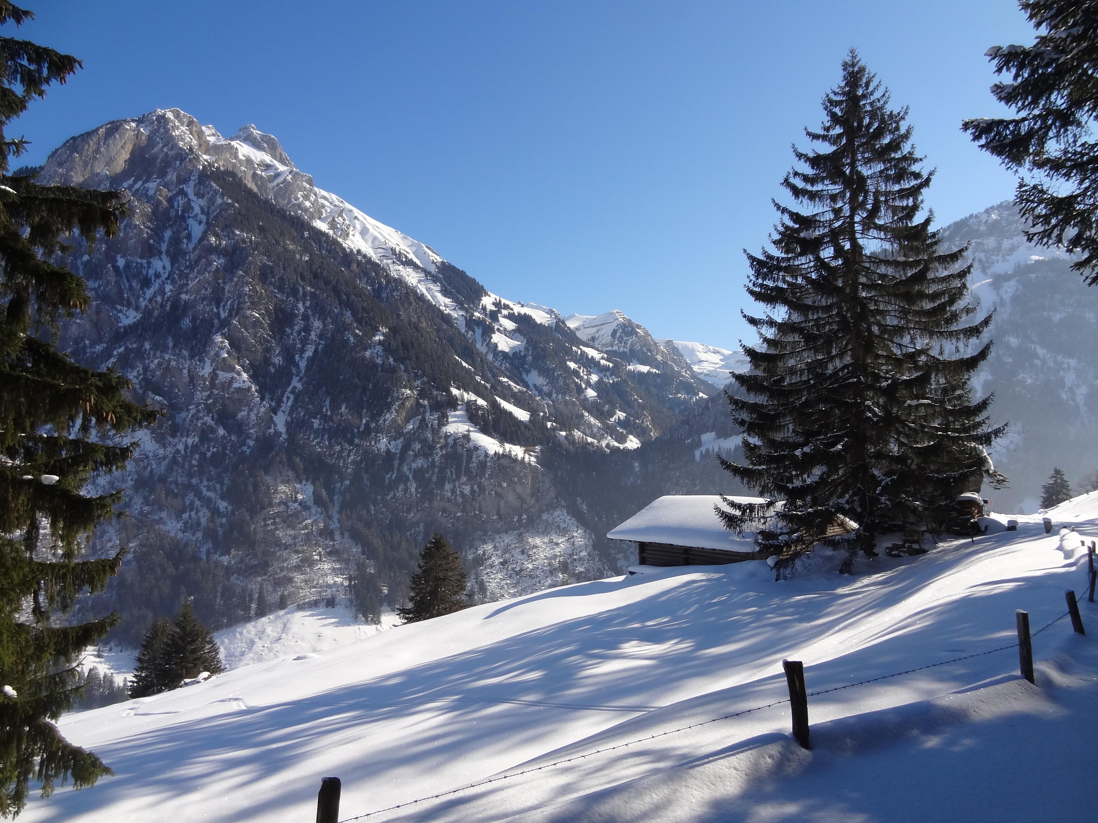 Зима снег в горах фото состоялось заседание