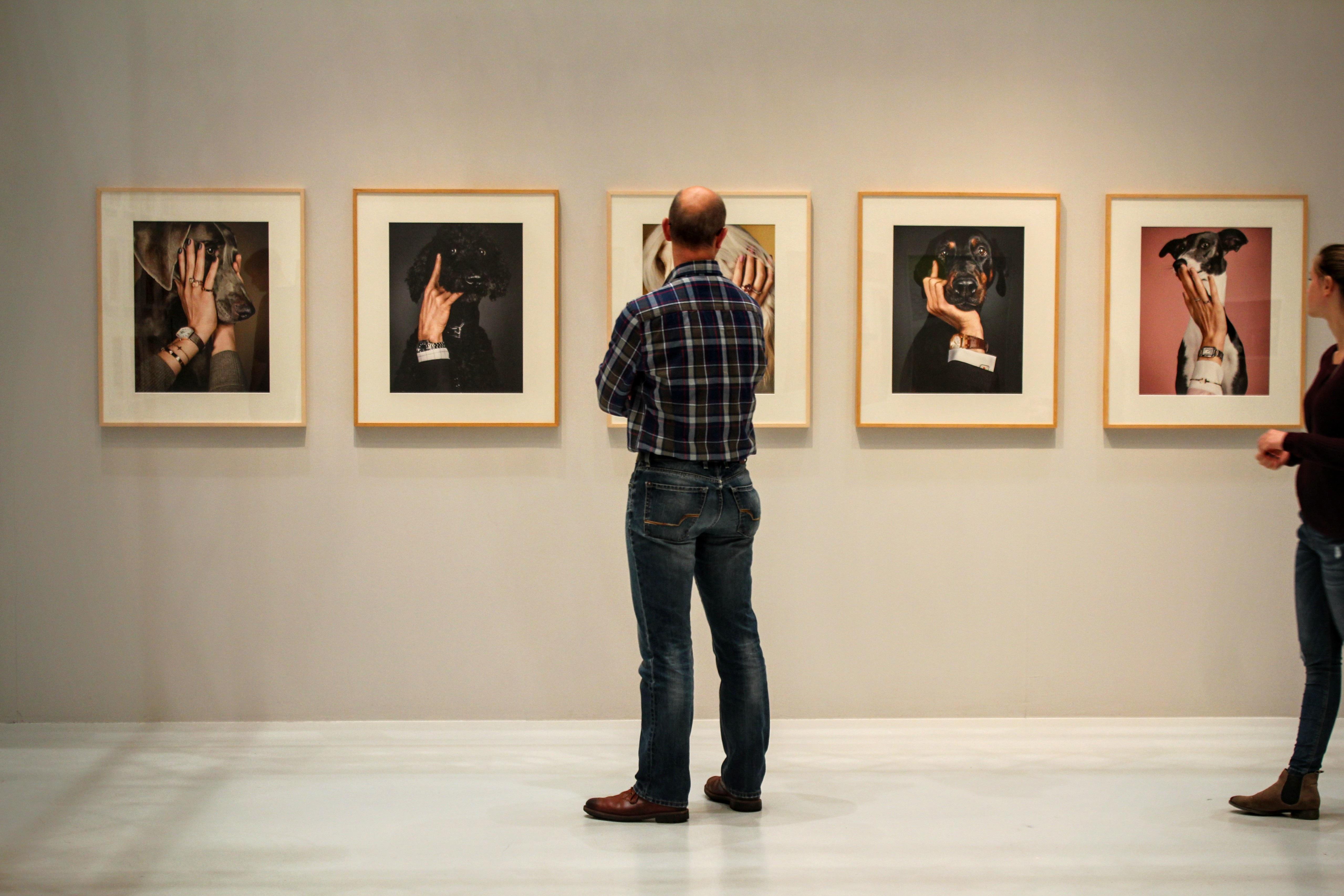 D Art Exhibition Jbr : 무료 이미지 박물관 디자인 갱도 만나다 관광 명소 방문자 현대 미술 미술관 전시회