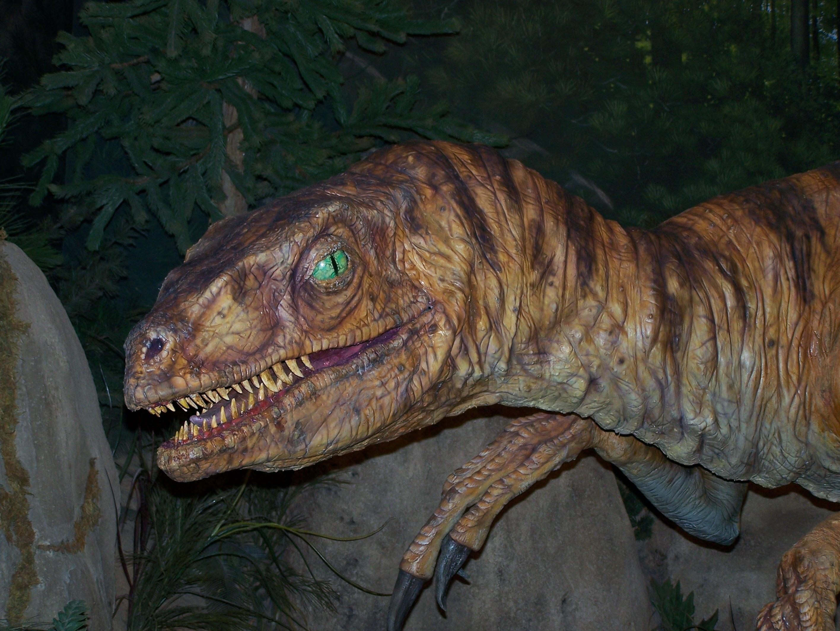 средства фото тиранозавра настоящего удалось скопировать картинку