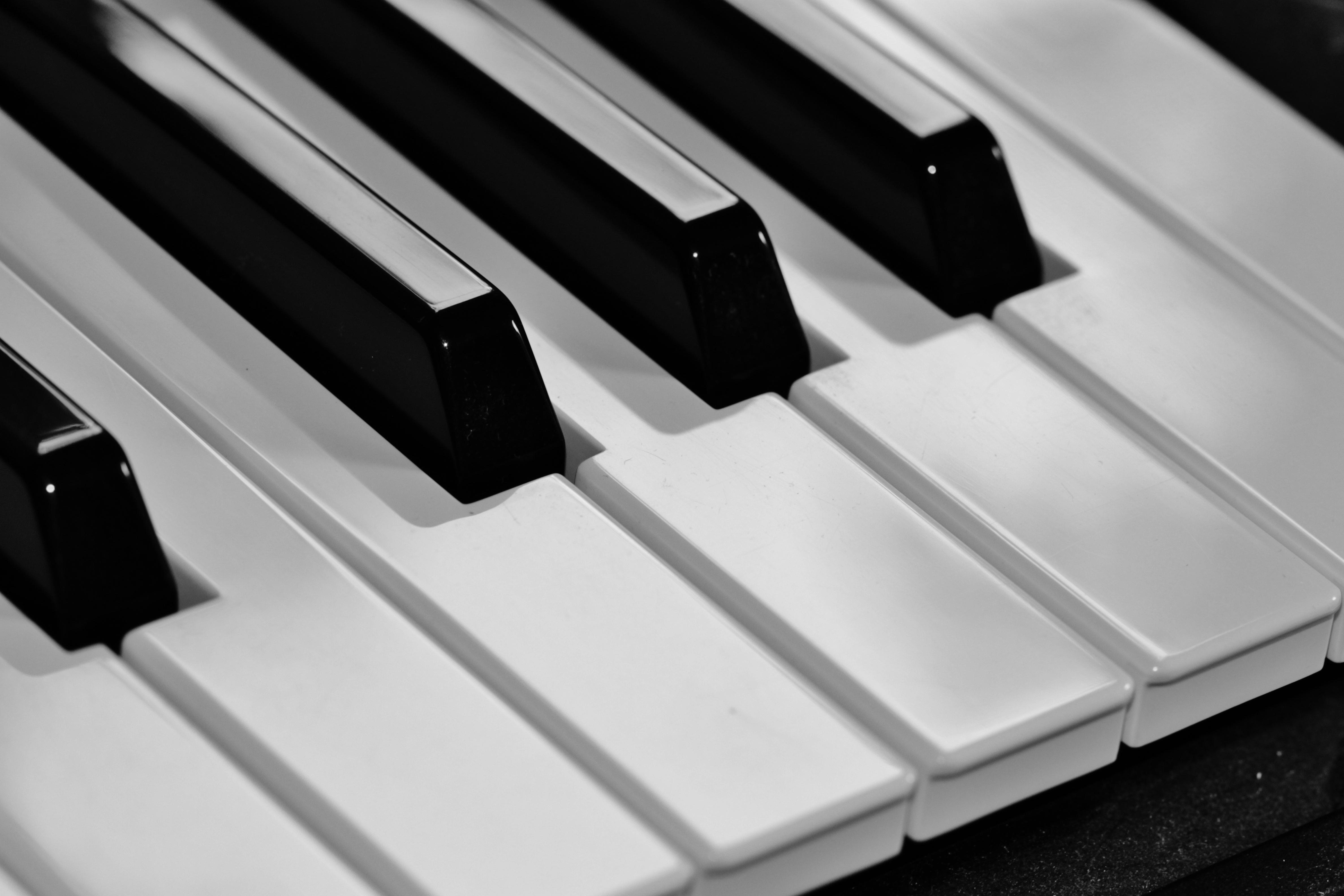 Gambar Alat Musik Warna Hitam Putih