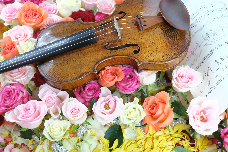 Поздравления с днем рождения под классическую музыку