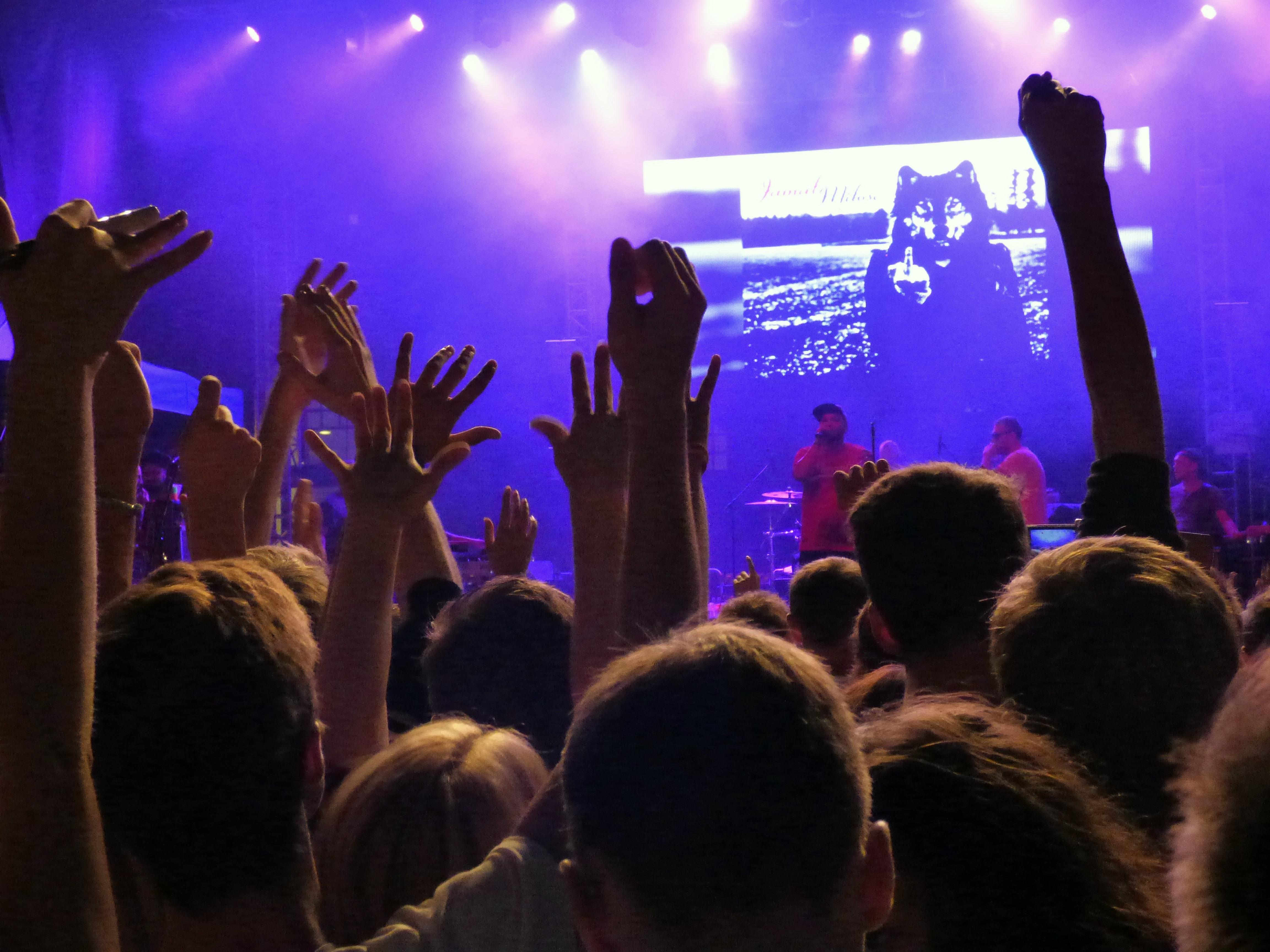 Звуки толпы на концерте скачать