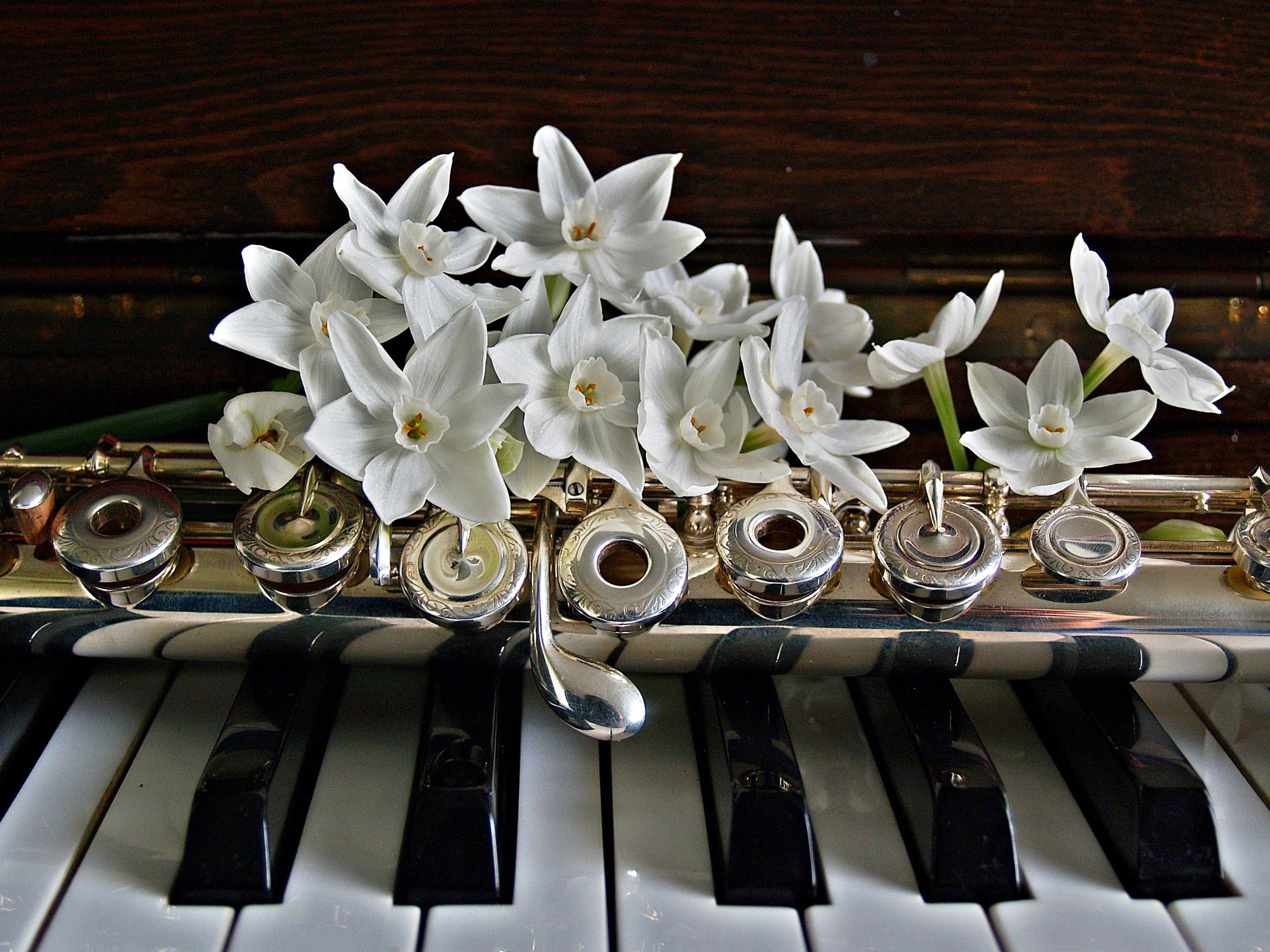 Открытка музыка весны