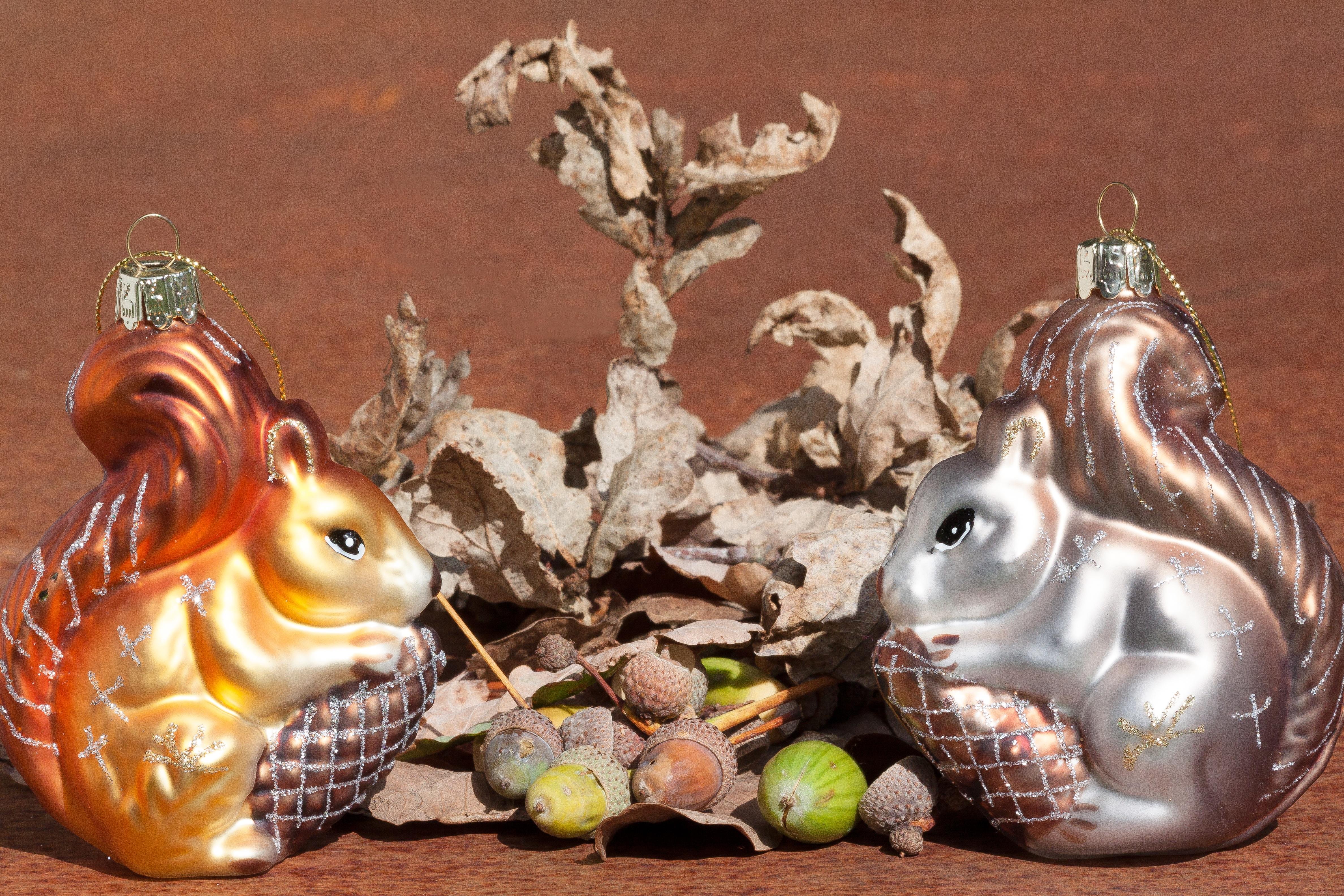 Free Images : nature, autumn, squirrel, hipster, figurine, chipmunk ...