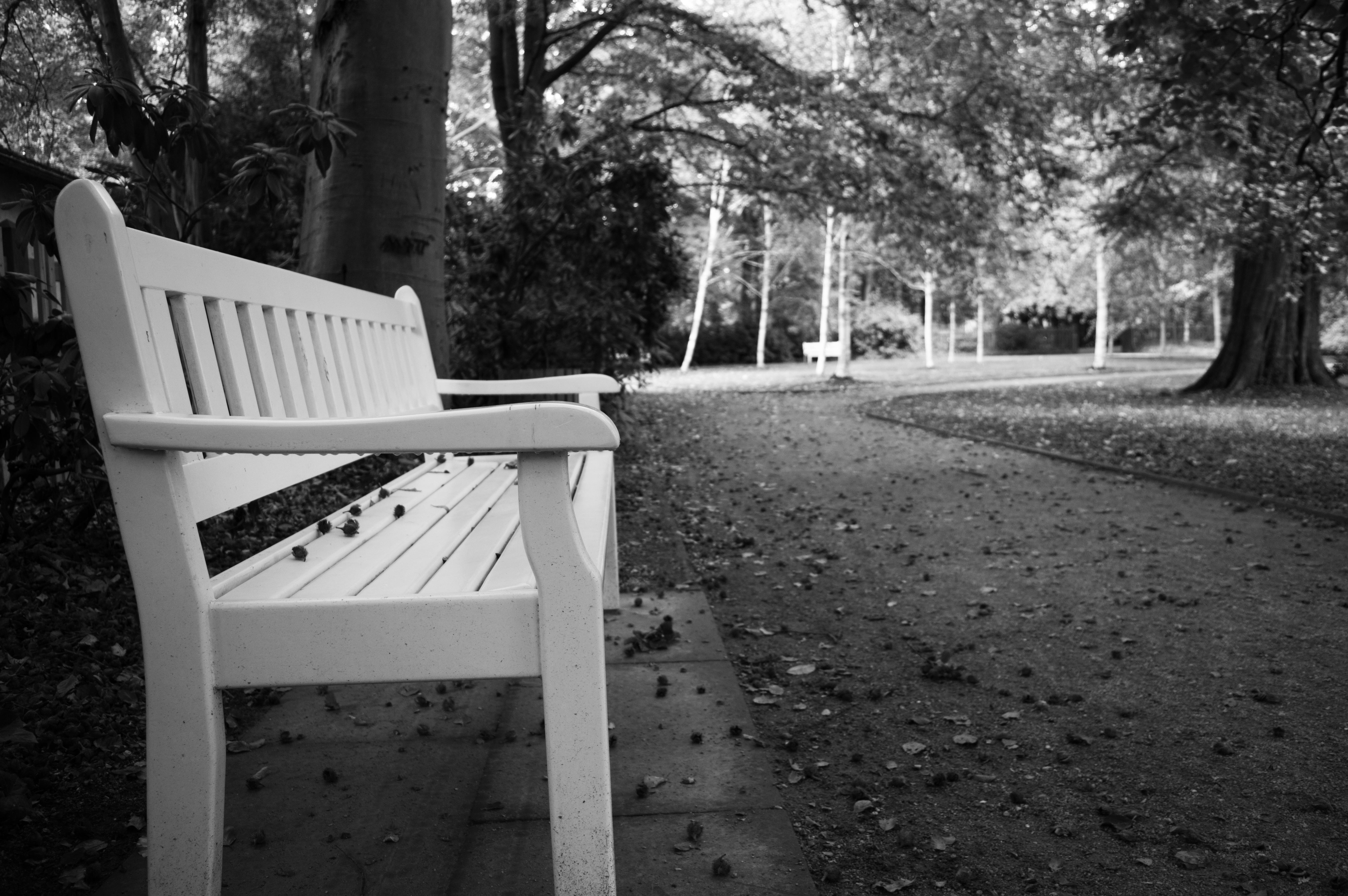 60+ Gambar Kursi Taman Warna Putih Gratis Terbaik