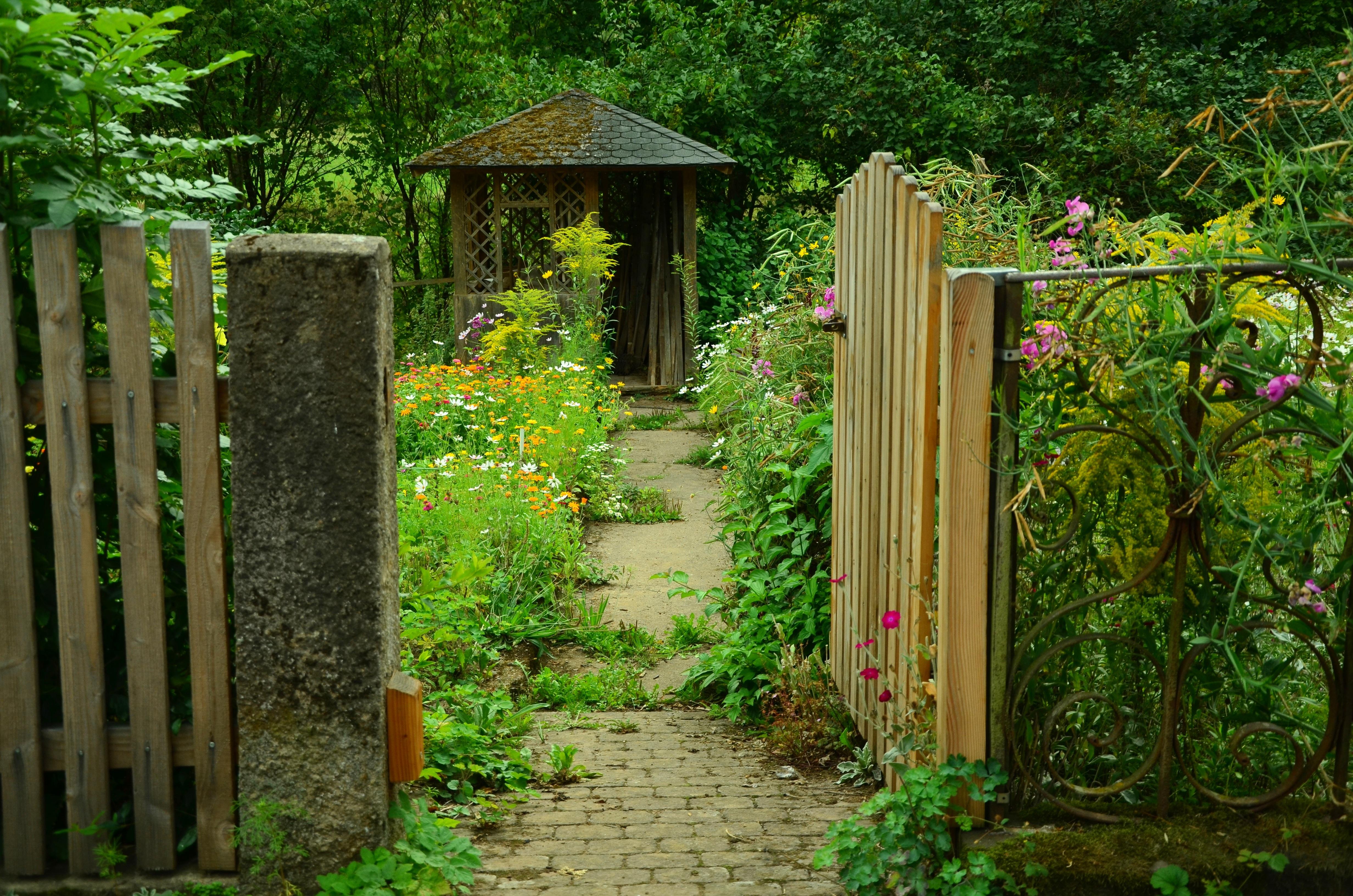Ilmaisia kuvia luonto kukka aita puu nurmikko for Dans mon jardin secret