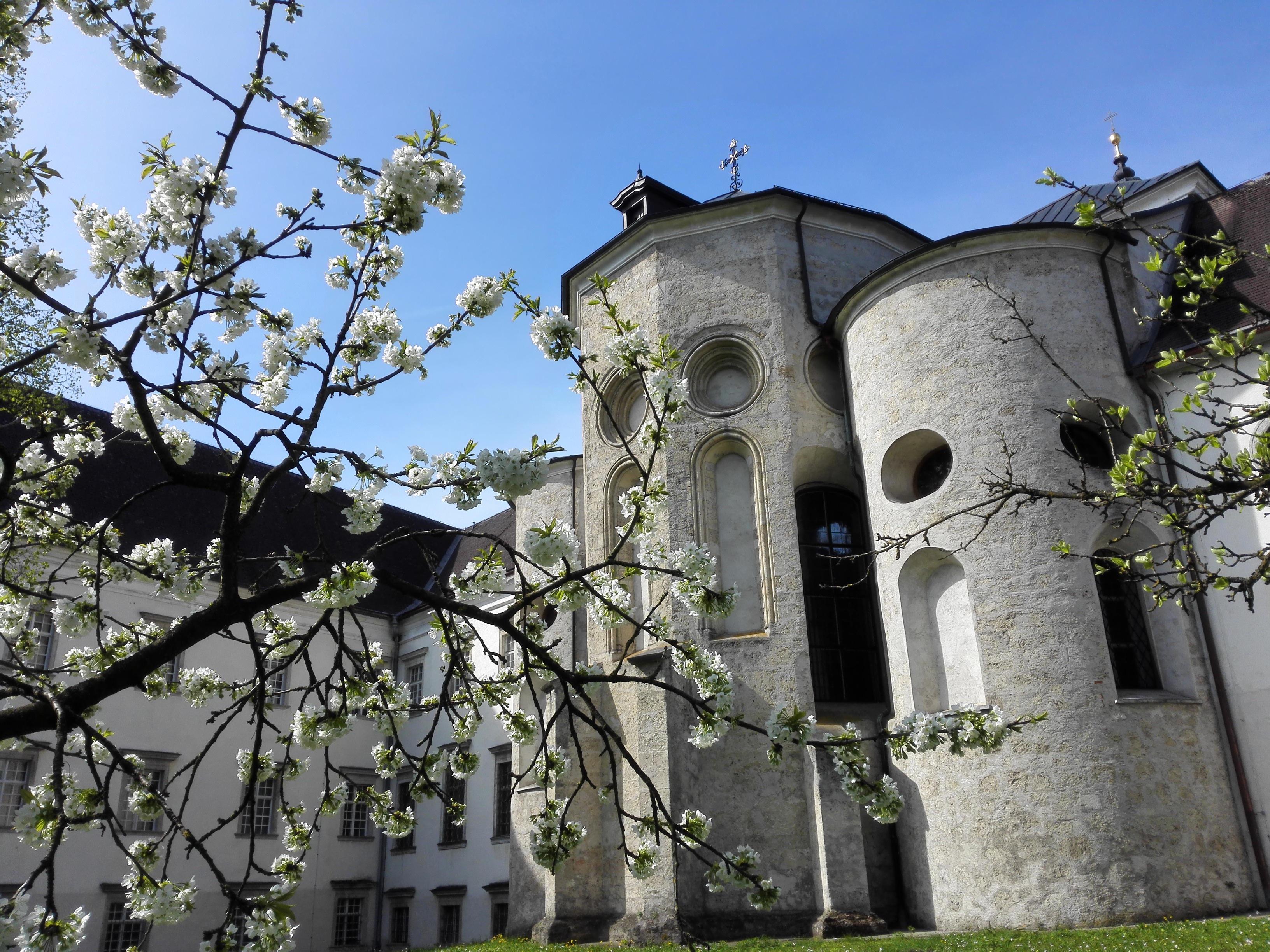 Gratis billeder : natur, blomst, flor, bygning, slot, afspejling, parkere, kirke, kapel, cherry ...